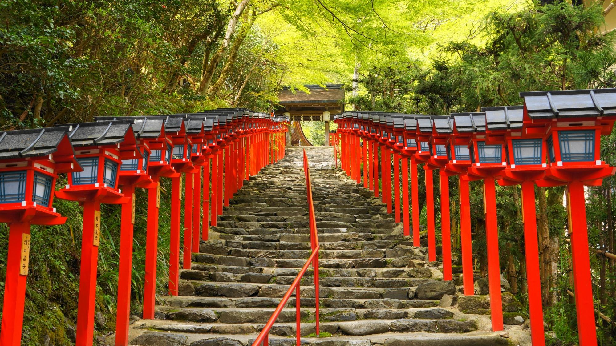 貴船神社 新緑 石段と灯籠と鮮やかな緑