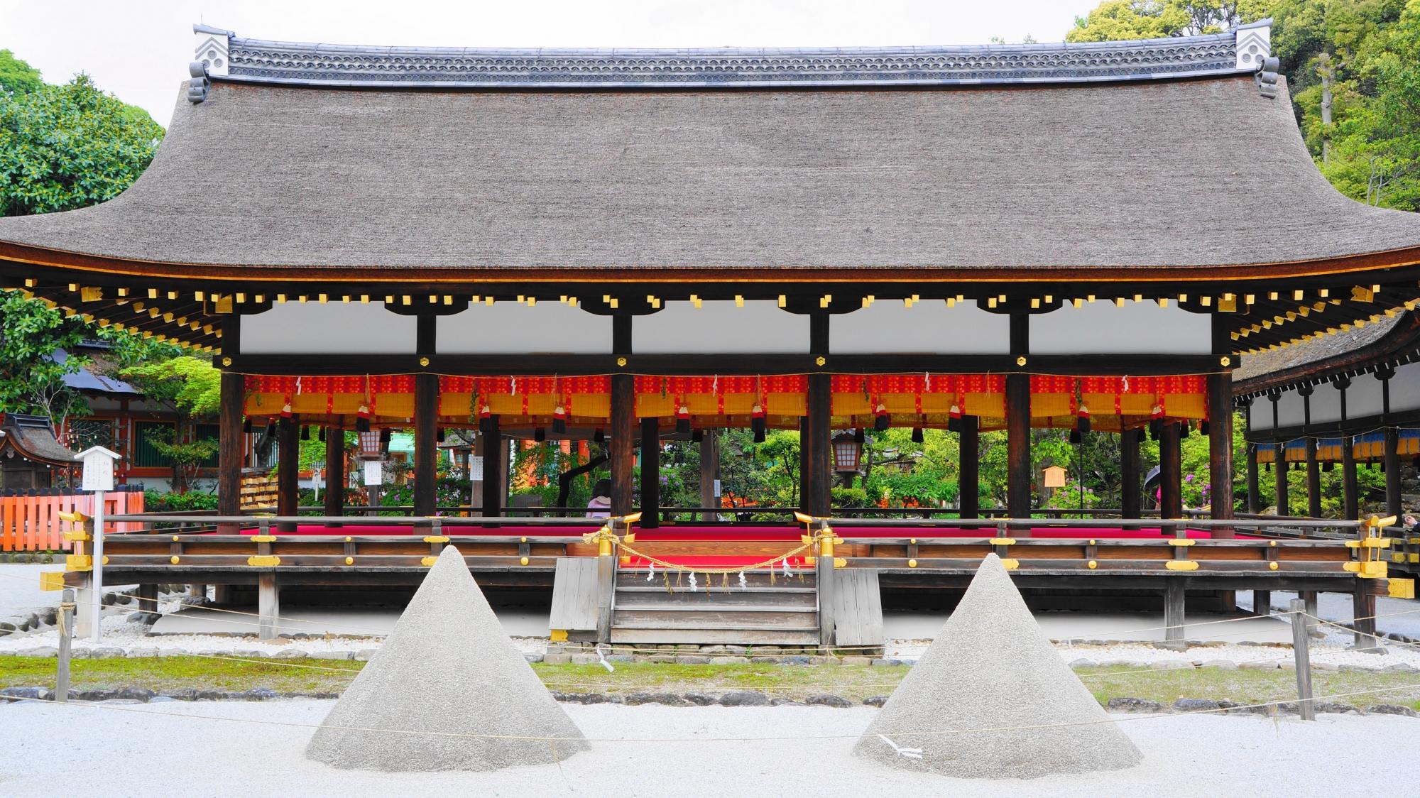 上賀茂神社 新緑と青もみじ 自然がいっぱいの神社