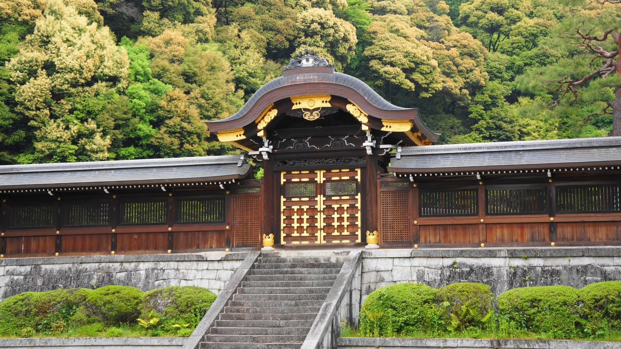 泉涌寺と今熊野観音寺 新緑と青もみじ さわやかな緑