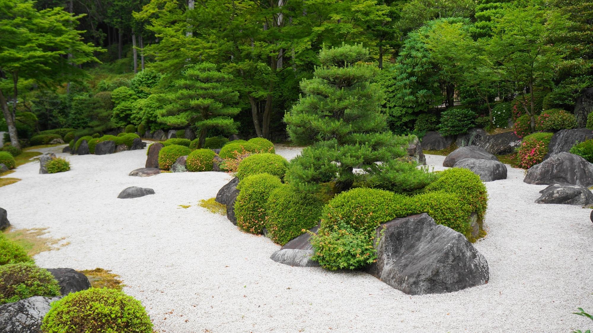 三室戸寺の白砂と緑の美しい枯山水庭園(石庭)