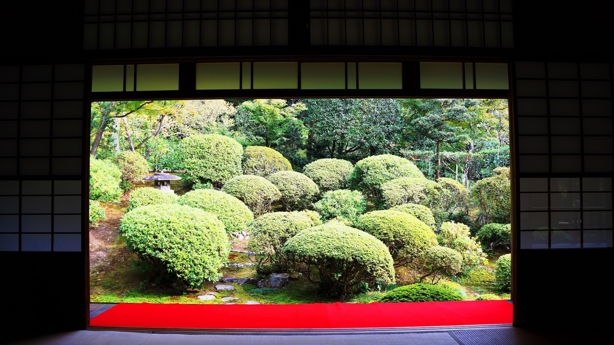 安楽寺の緑の書院庭園