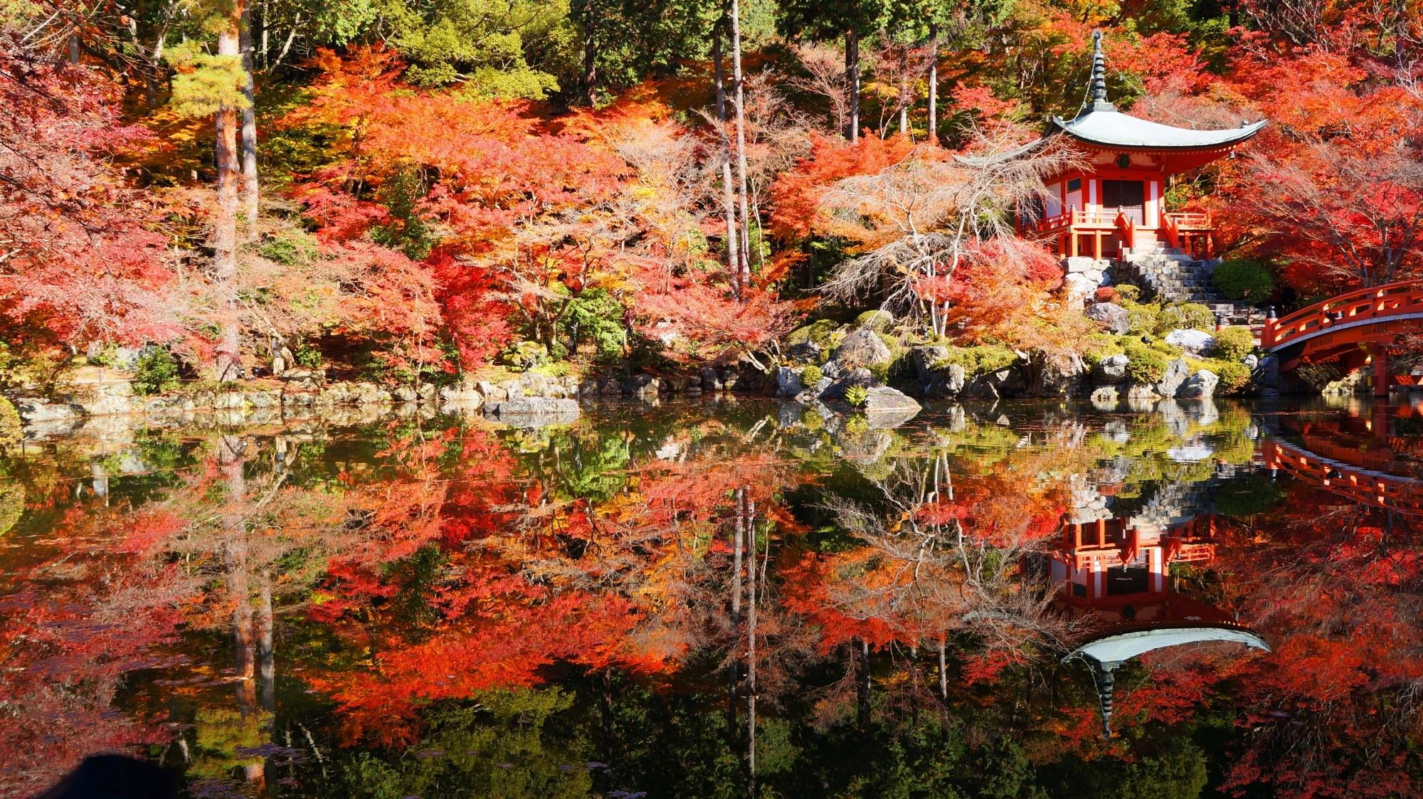 極上の紅葉の水鏡