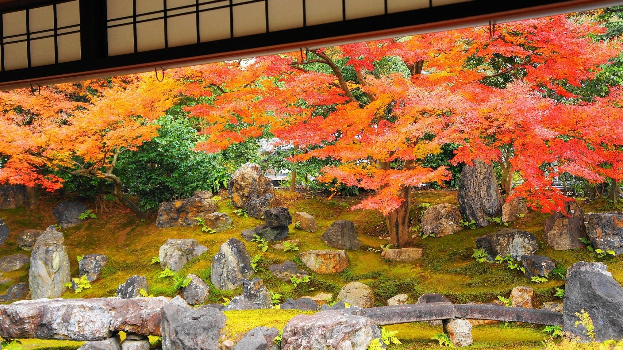 岩と紅葉の庭園