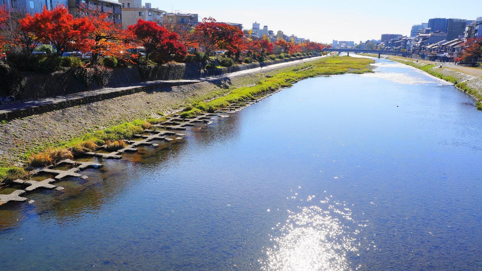 鴨川 紅葉 京都の長閑な秋の彩り