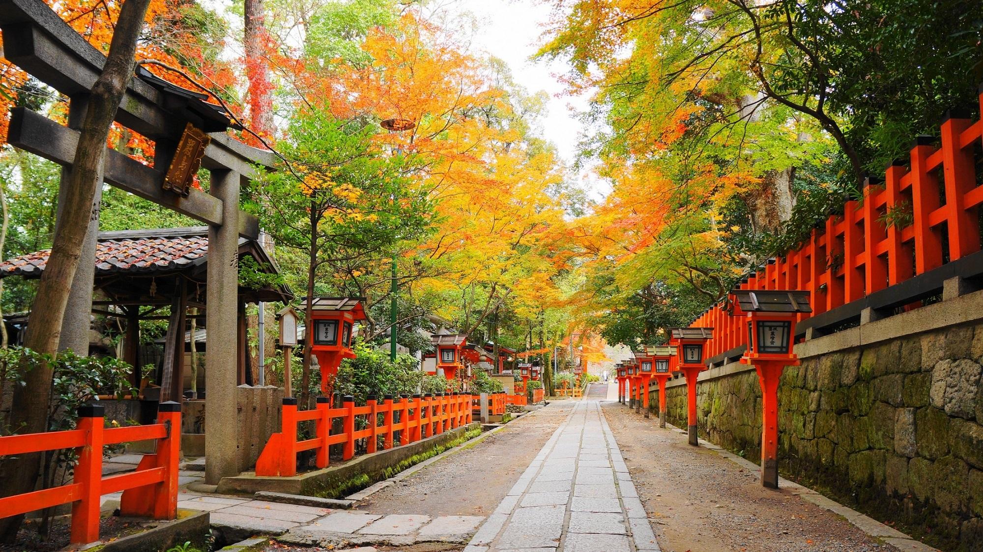 人気観光名所の可愛い紅葉