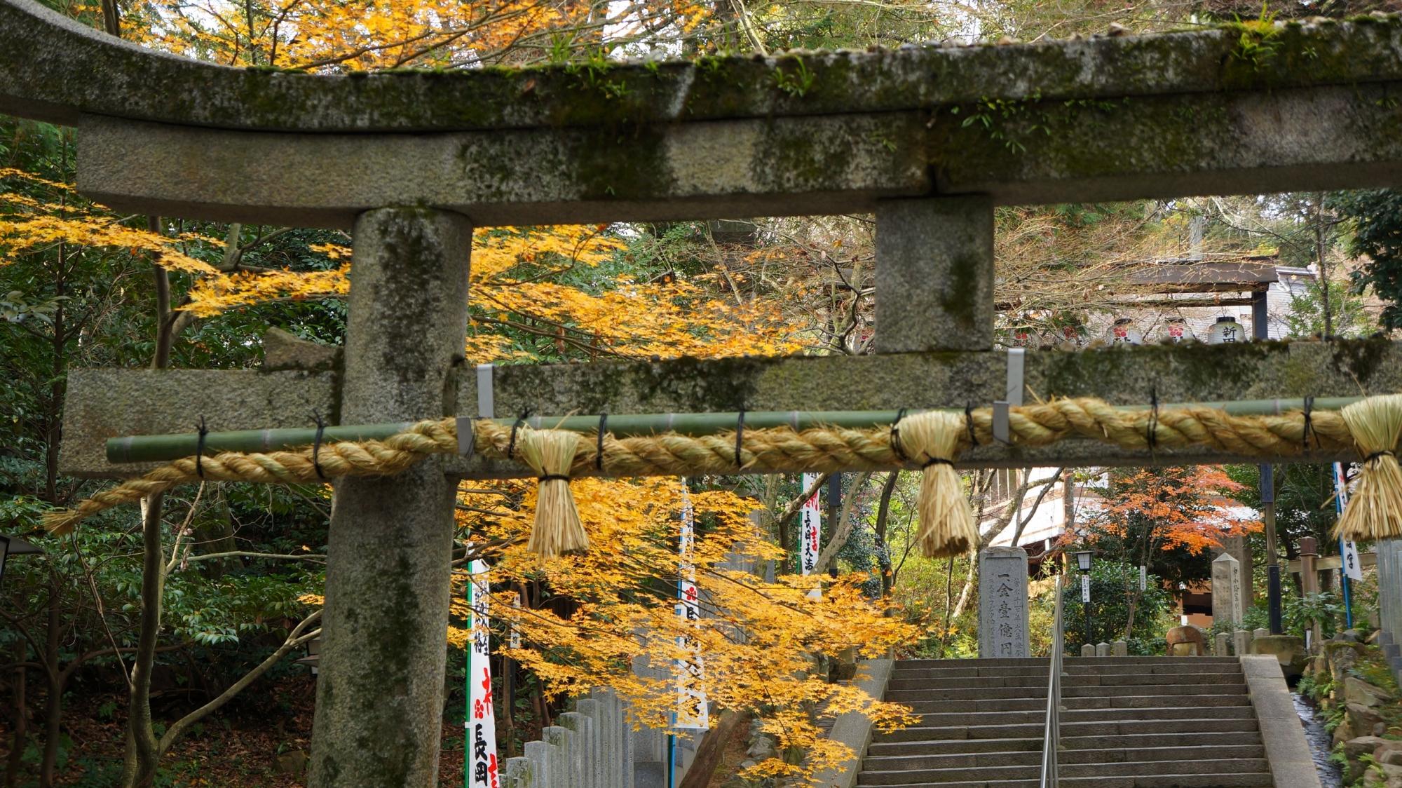 長岡天満宮の参道と残った紅葉