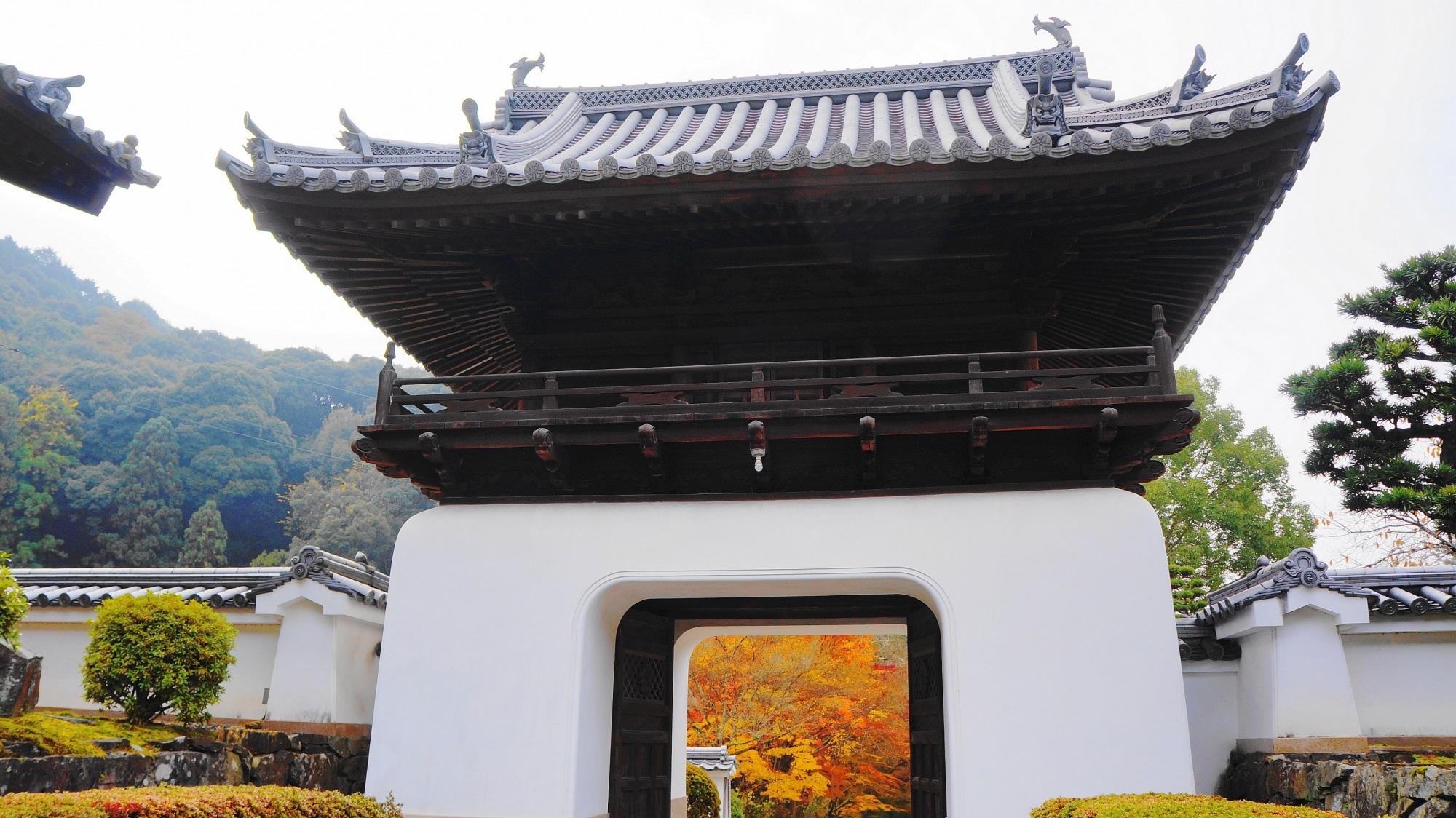 興聖寺の境内から眺めた龍宮門と琴坂の紅葉