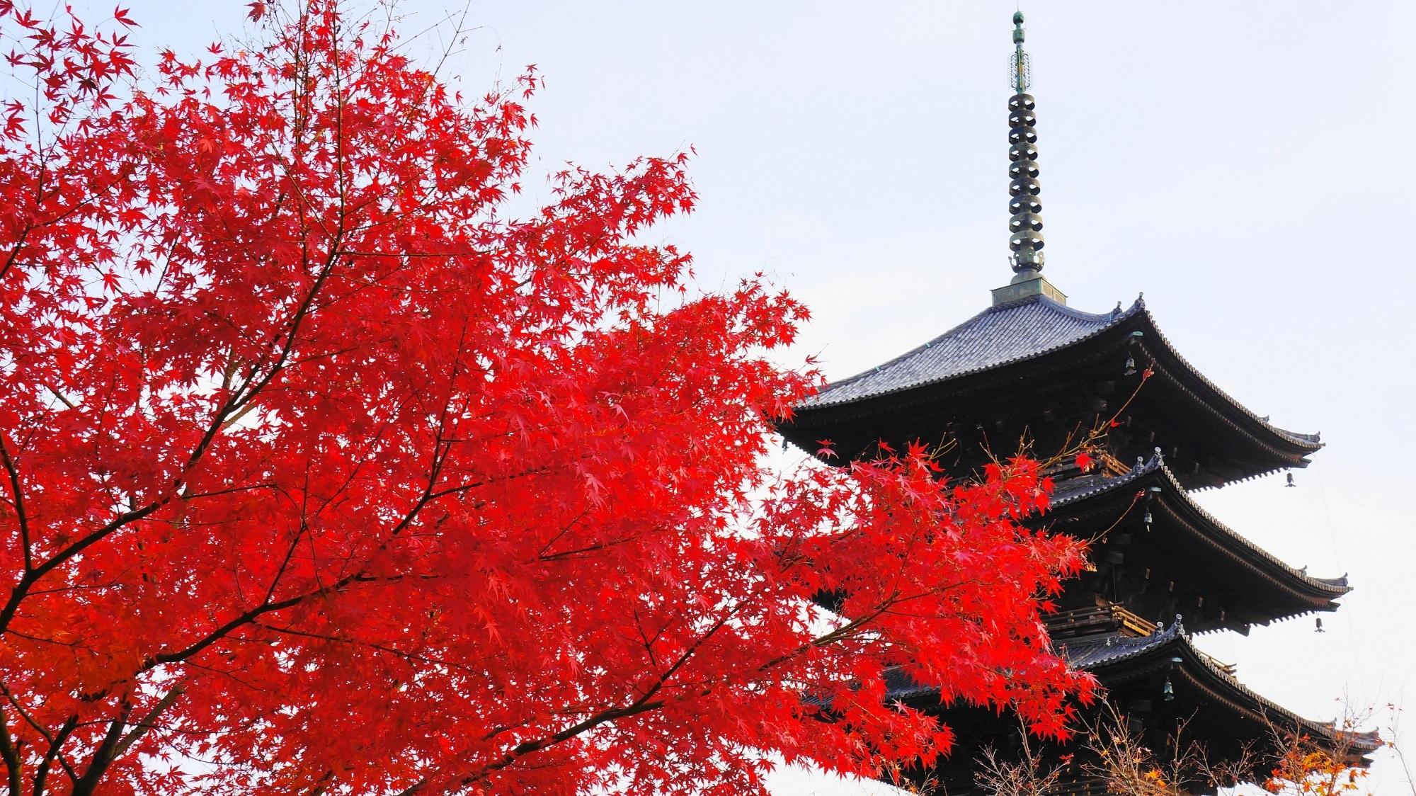 京のお馴染みの紅葉名所