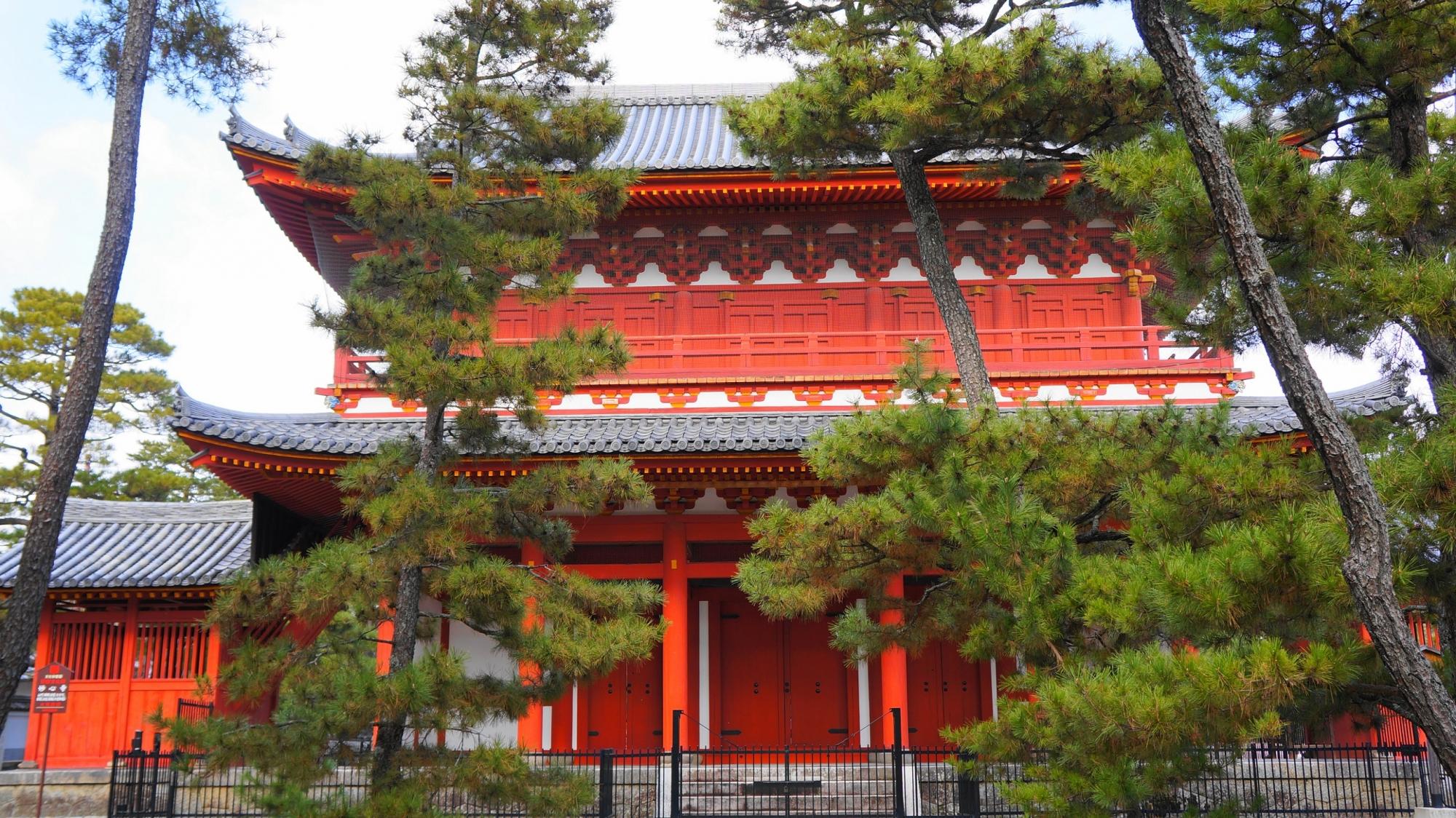妙心寺の美しい朱色の三門