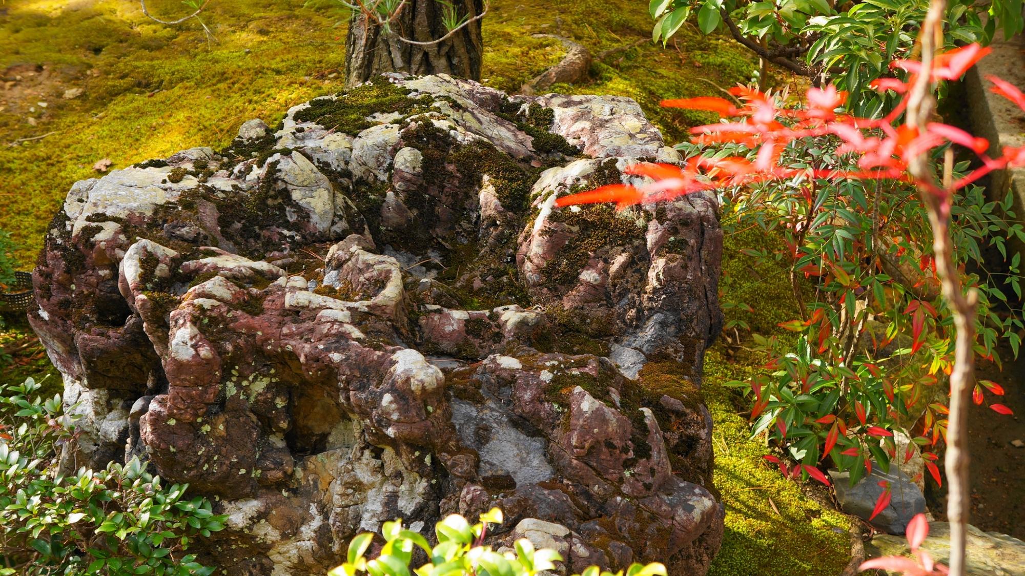 Tokai-an Kyoto Myosinji Temple 妙心寺 東海庵 相の庭
