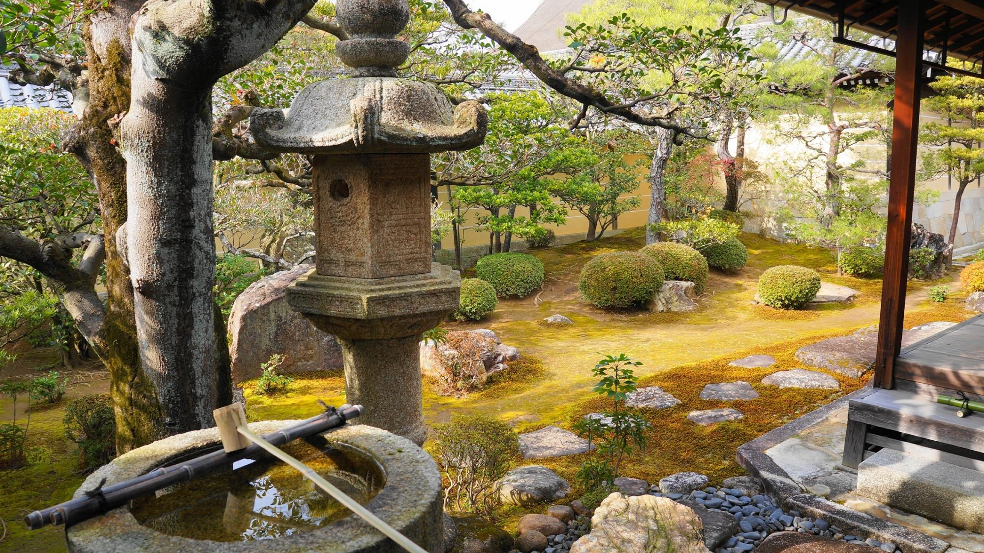 妙心寺塔頭の東海庵の美しい相の庭