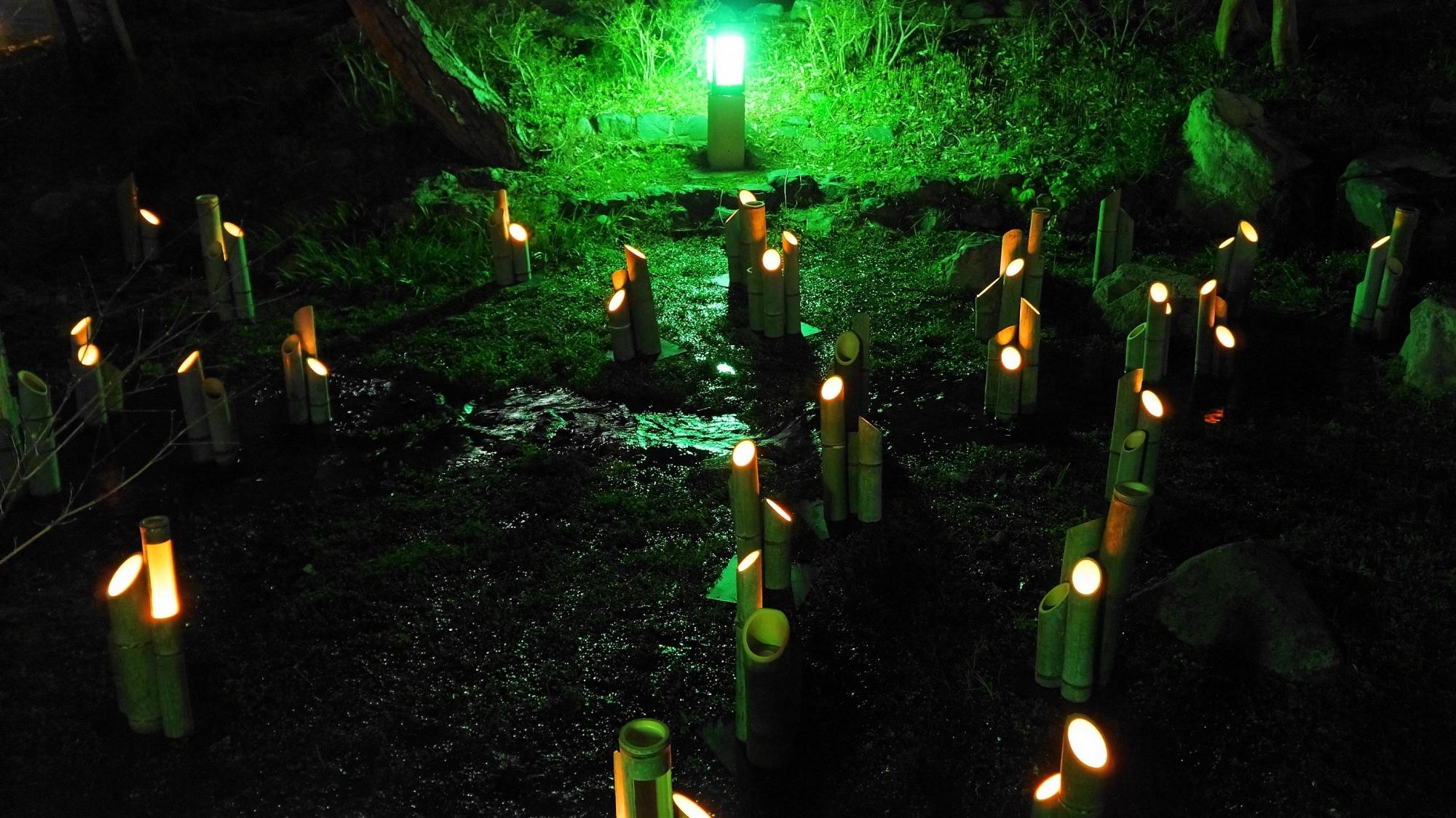東山花灯路 円山公園 竹灯り ライトアップ