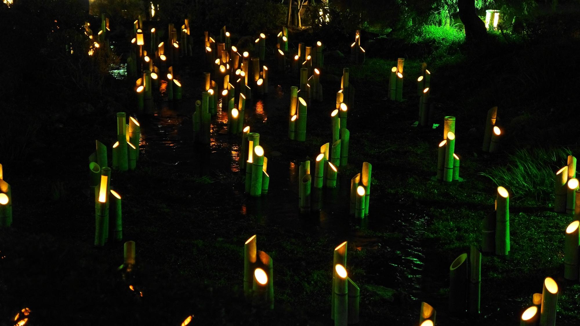 円山公園の東山花灯路の竹灯り