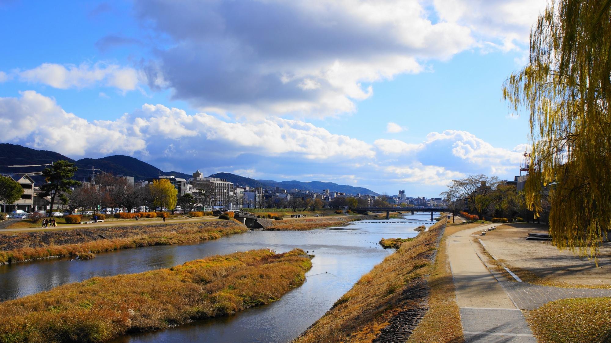 長閑な鴨川の丸太町橋付近の景色