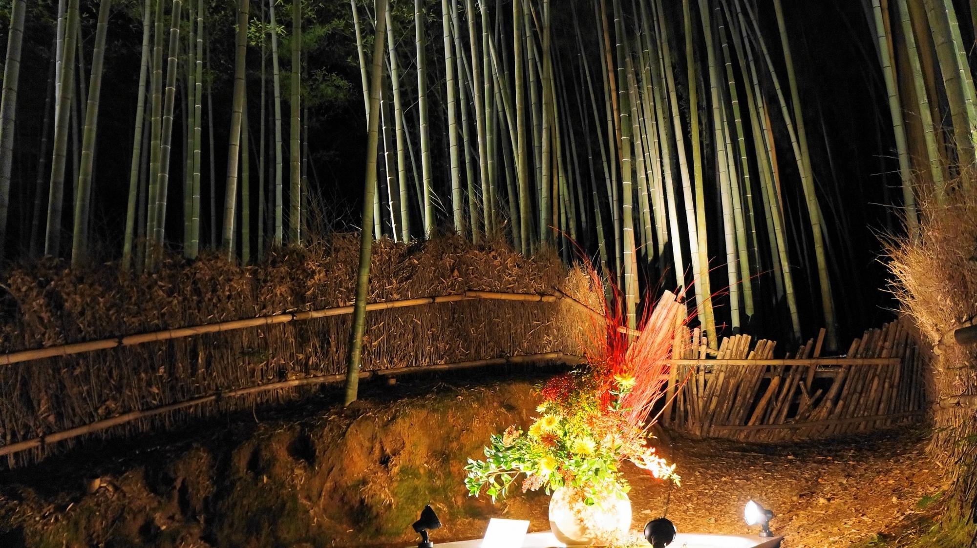 嵐山花灯路の美しい竹林ライトアップ