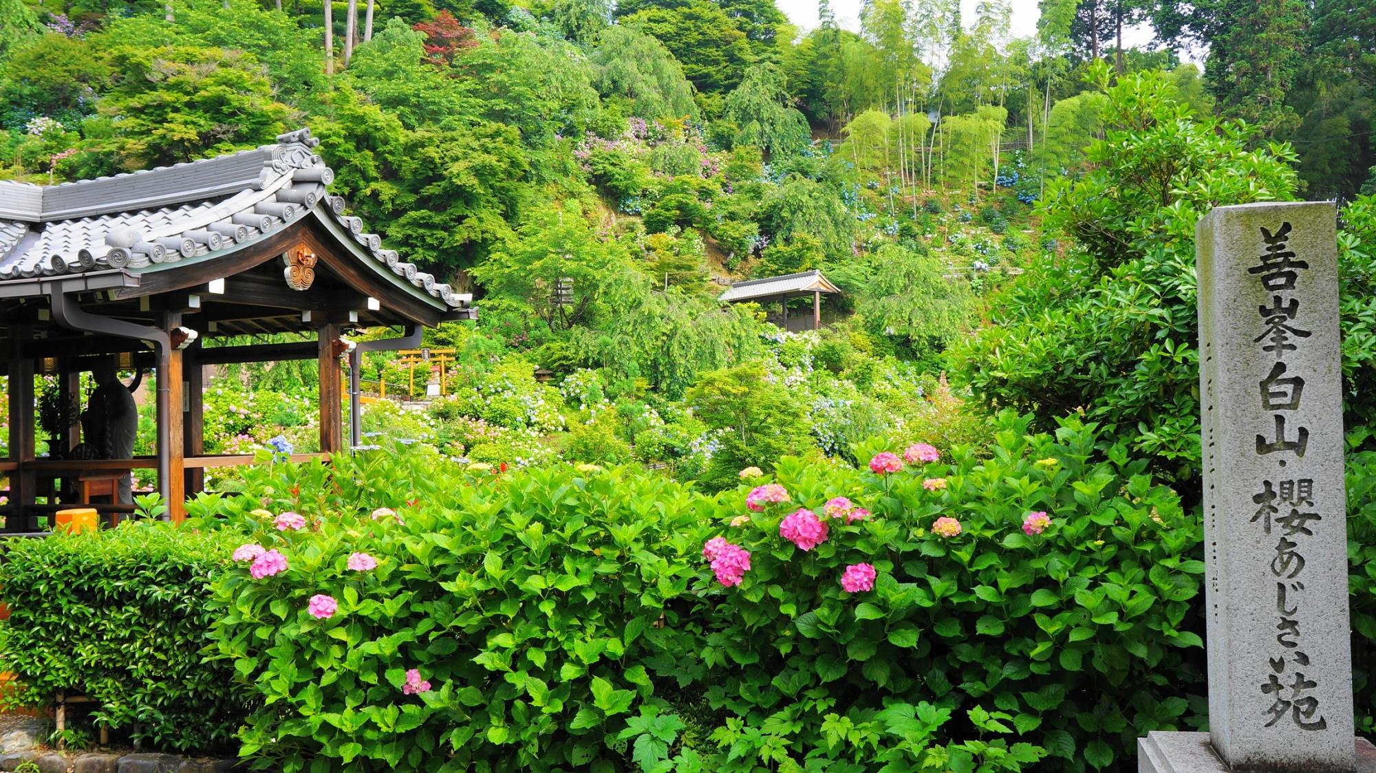 善峯寺の「白山・櫻あじさい苑」の入り口