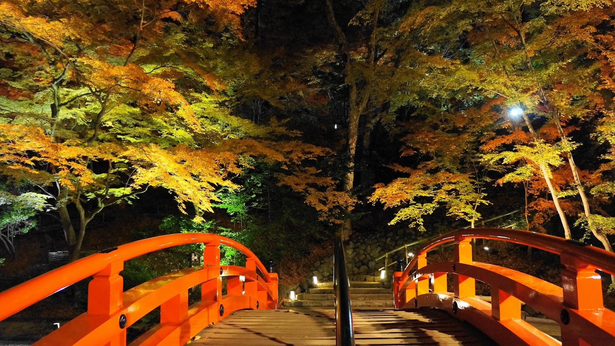 北野天満宮のもみじ苑の鶯橋と紅葉ライトアップ