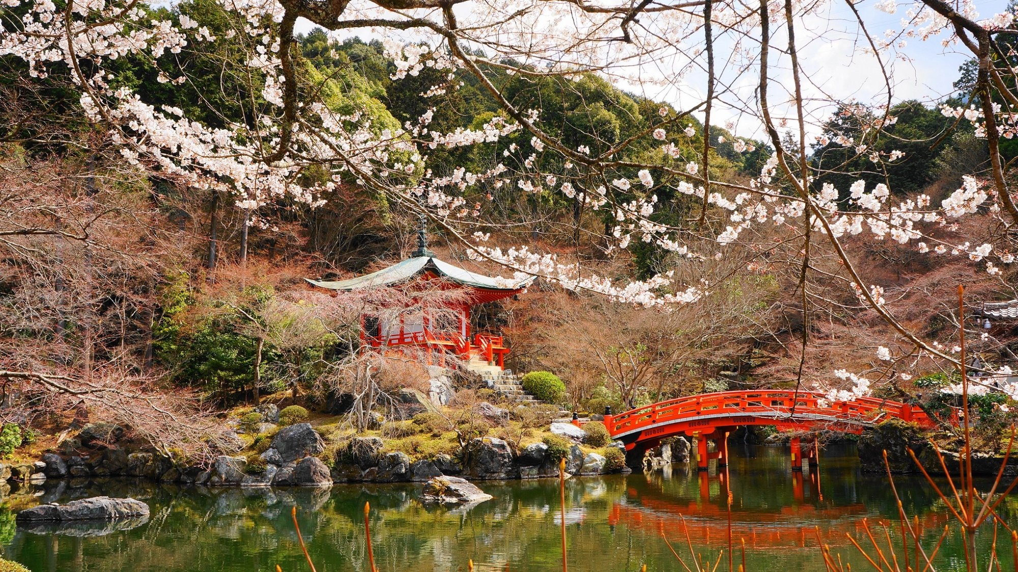 豊臣秀吉の醍醐の花見で有名な醍醐寺の弁天堂と桜