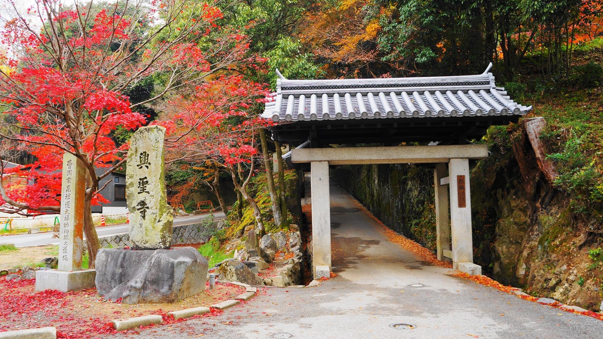 興聖寺の鮮やかな紅葉に彩られた石門(総門)
