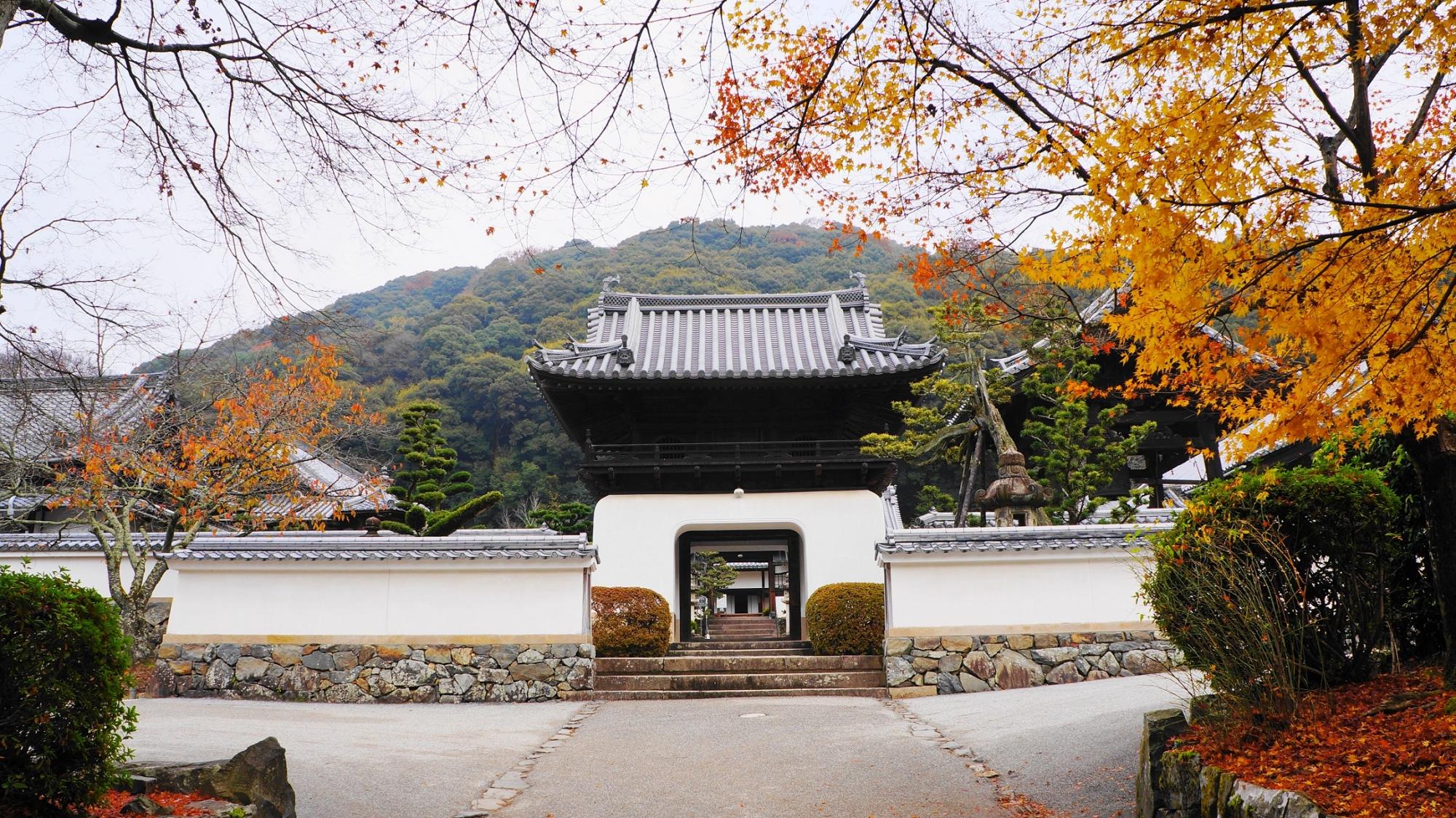 興聖寺の龍宮造りの独特の形の山門と紅葉