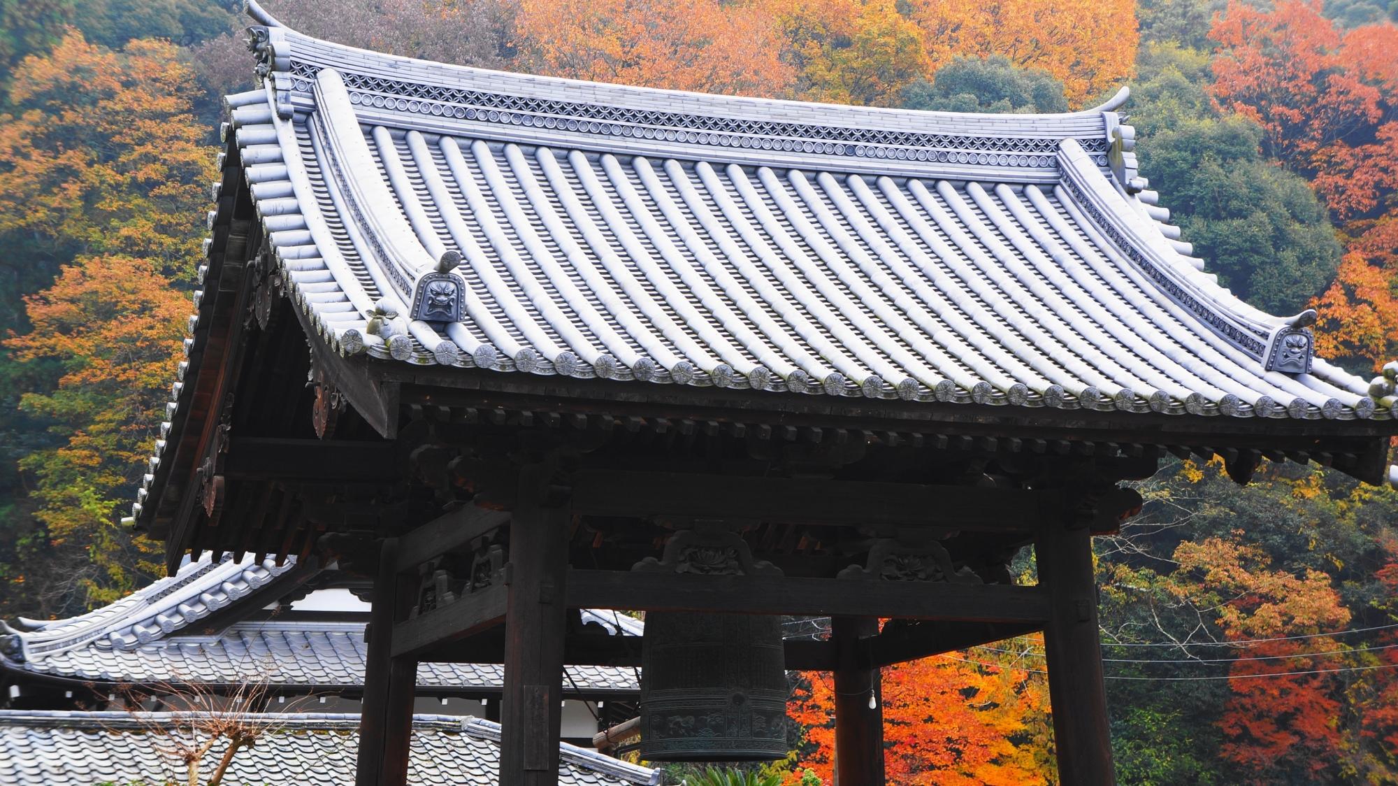 興聖寺の紅葉が華やぐ鐘楼