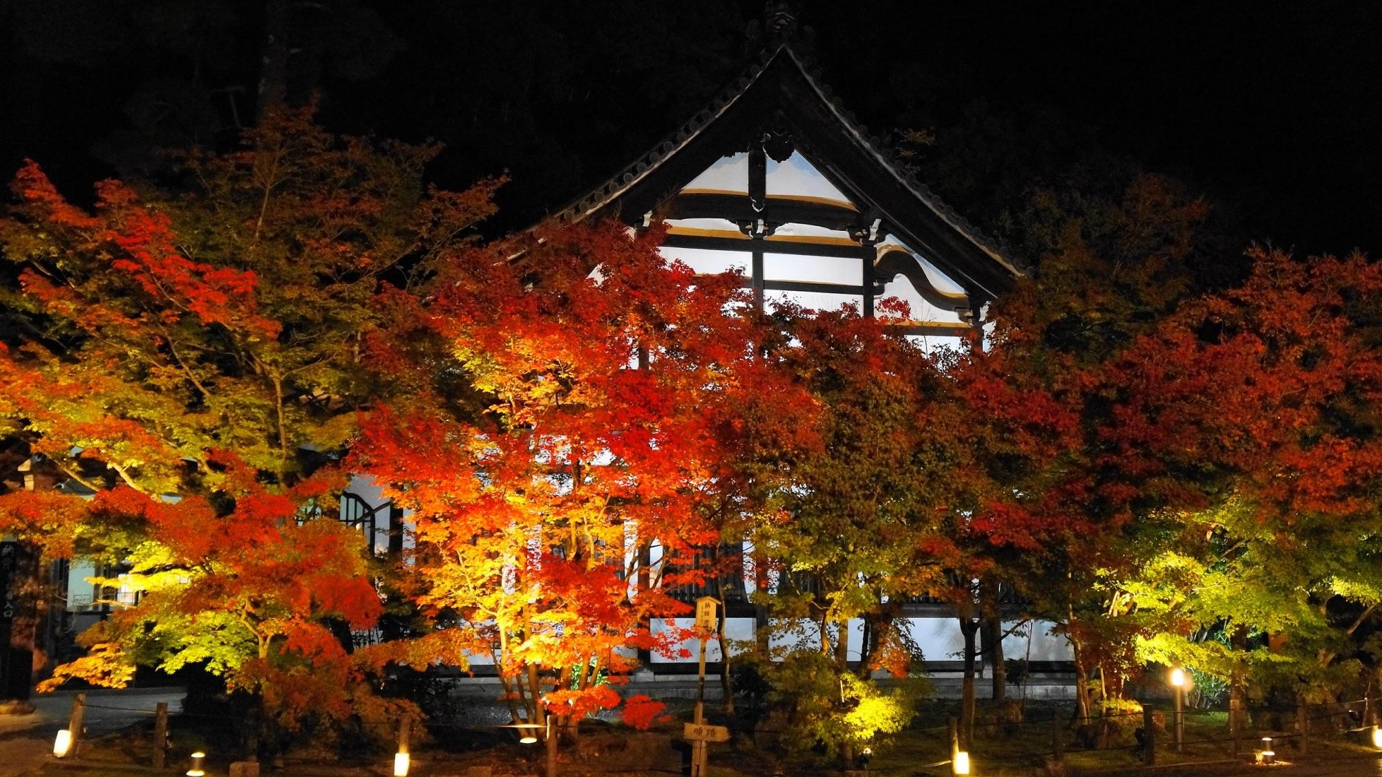庫裡(鶴寿台)の紅葉ライトアップ