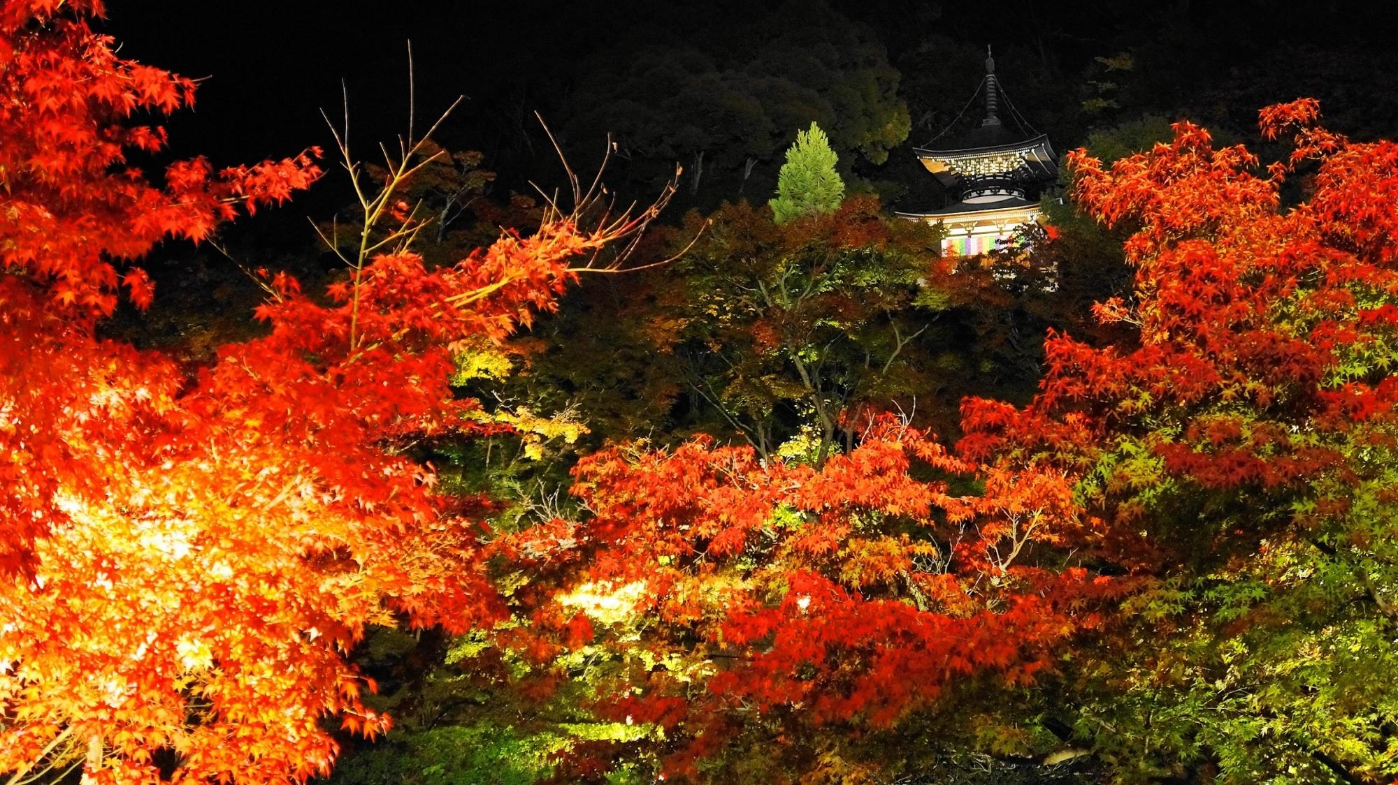 永観堂の多宝塔の紅葉ライトアップ