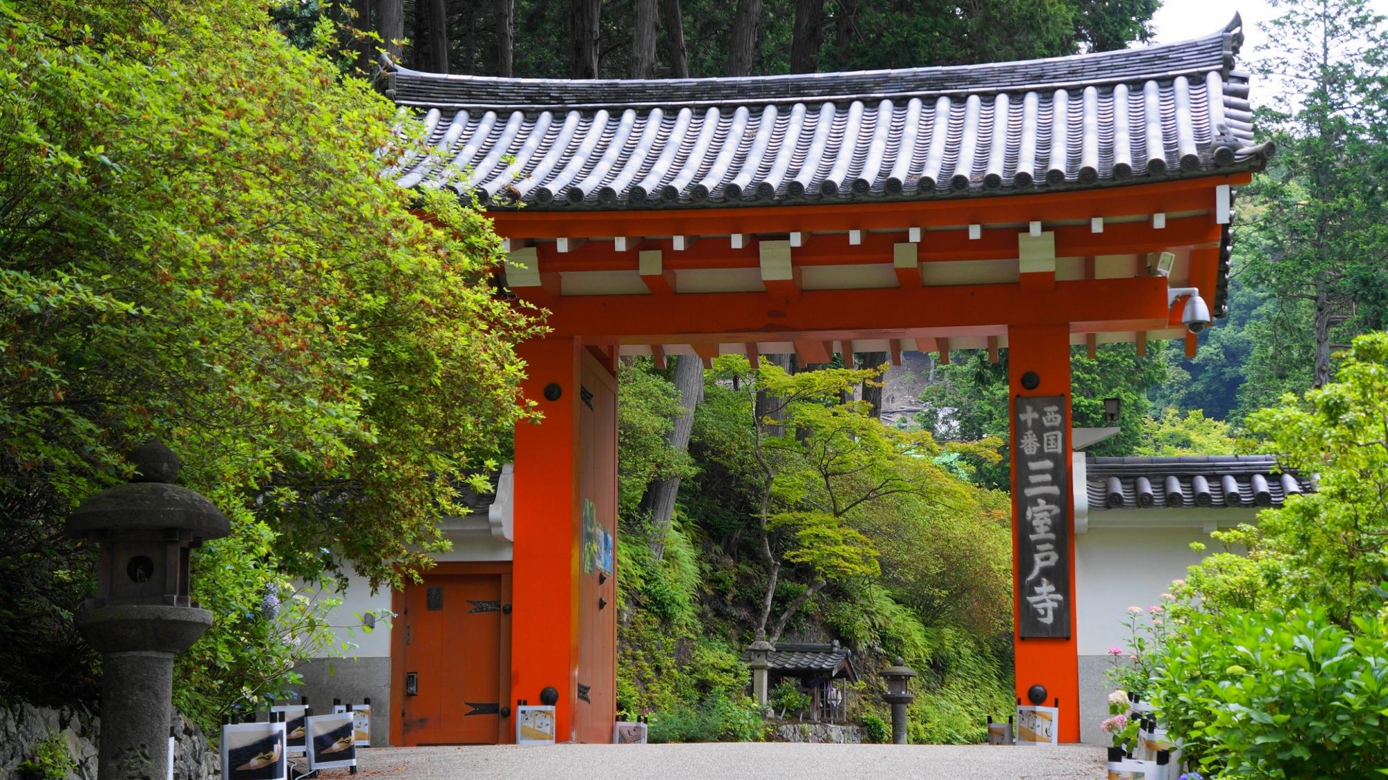 緑の中に佇む三室戸寺の朱色の山門