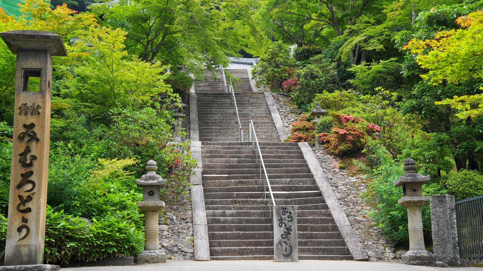 三室戸寺の本堂へ続く長い石段