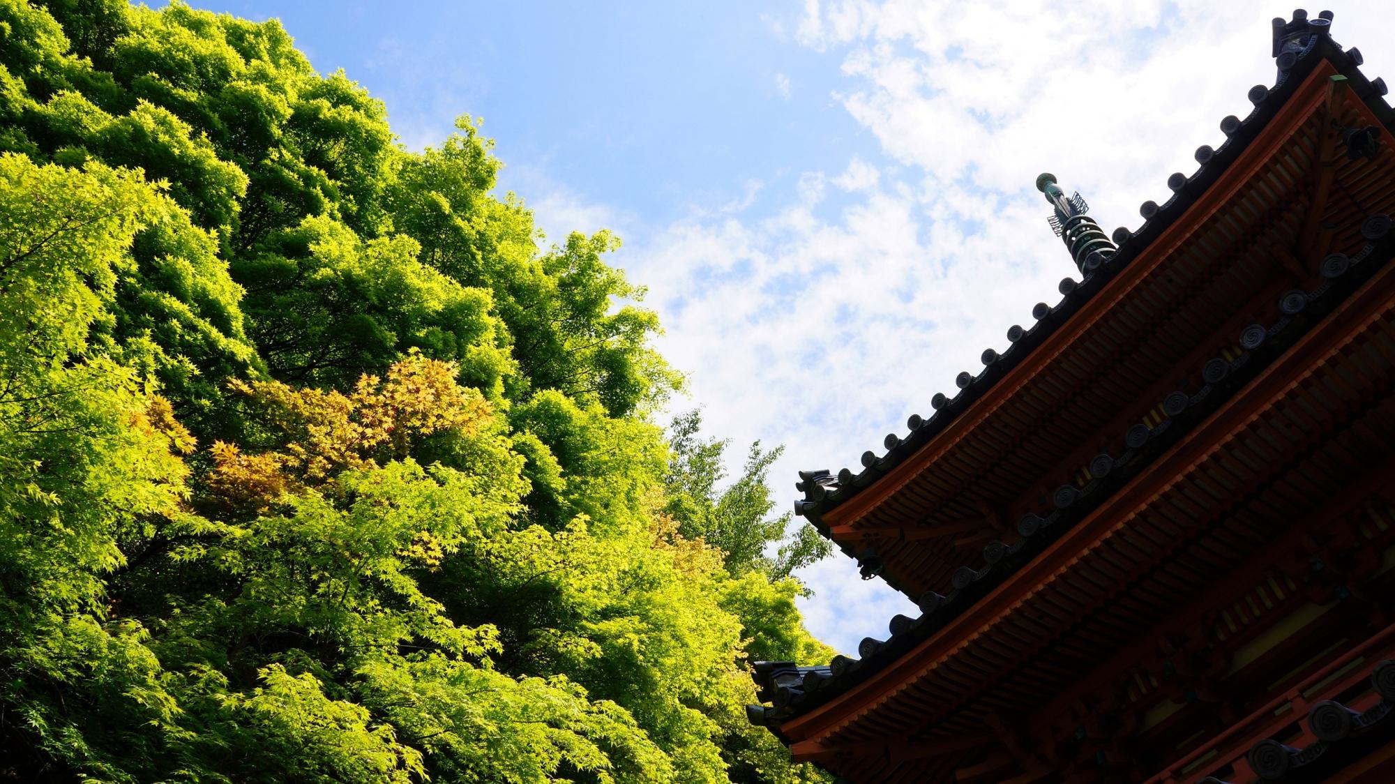 三重塔のシルエットと眩しい新緑