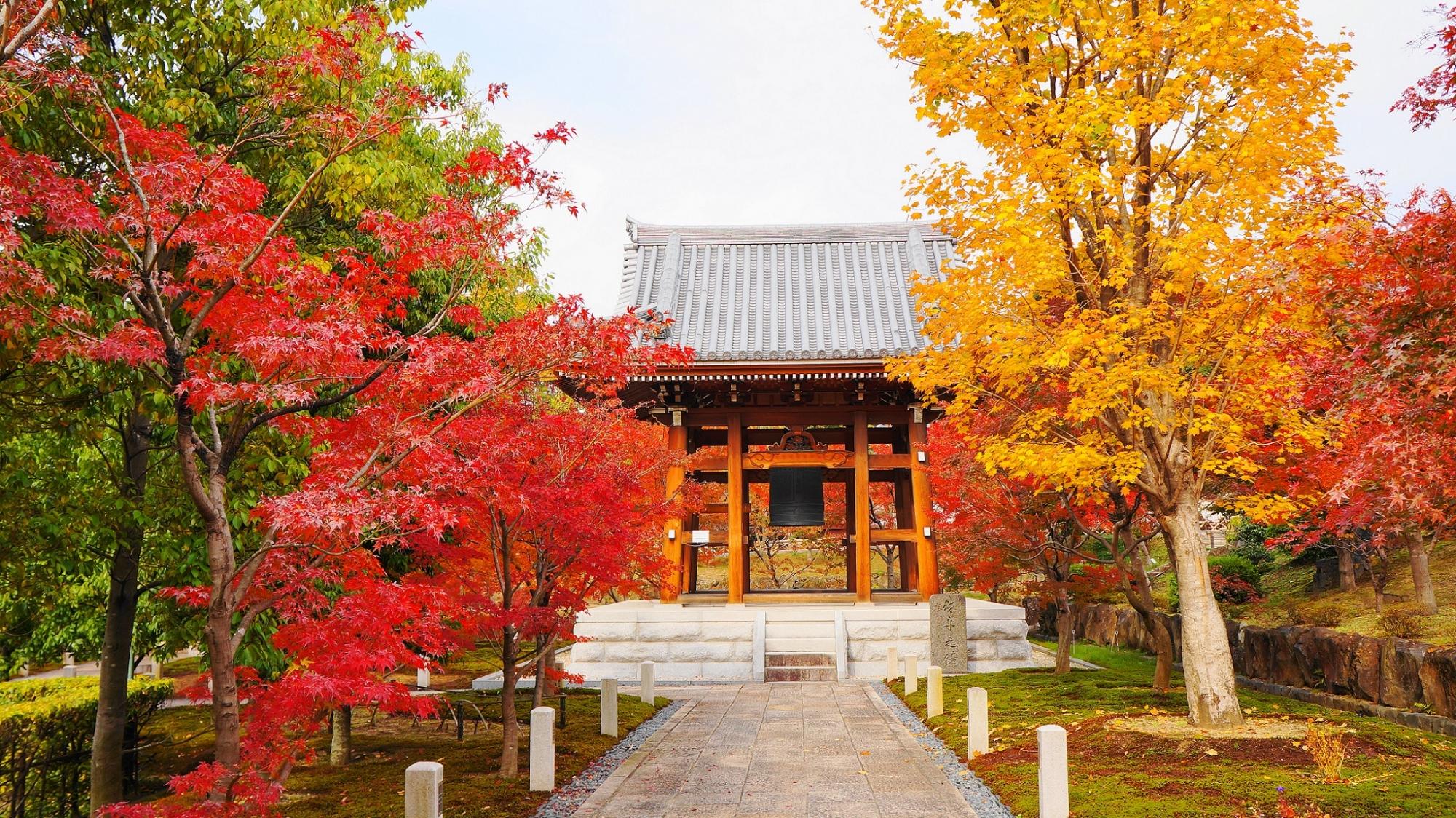 智積院の鐘楼と赤色や黄色の紅葉
