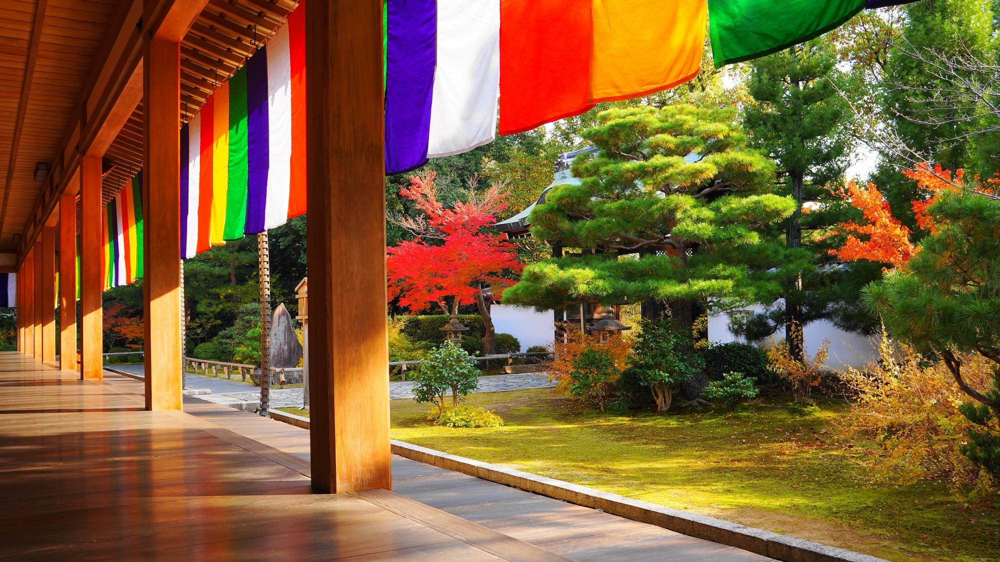 秋風に揺らめく仏旗の下から見える秋色の庭園
