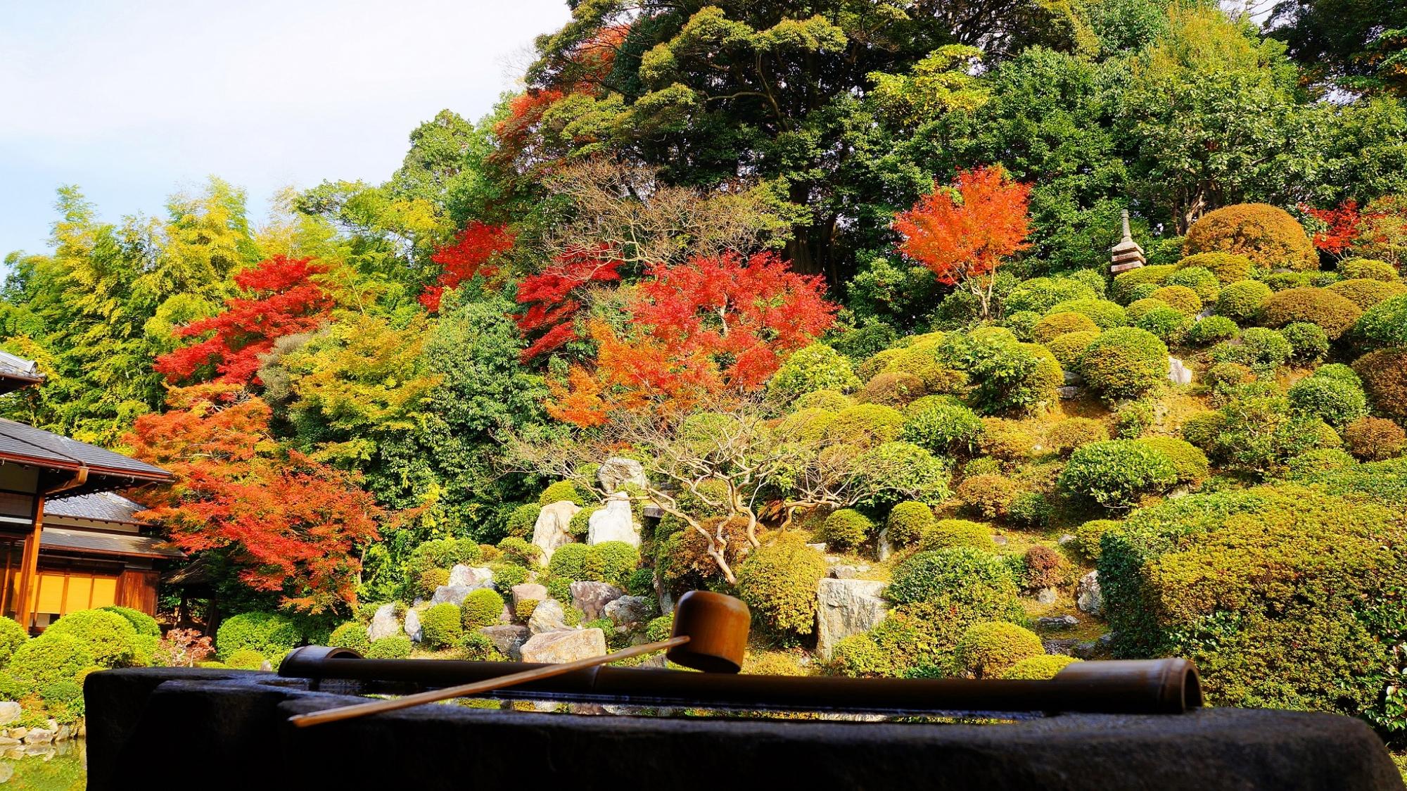 智積院の秋の名勝庭園を演出する一文字の手水鉢