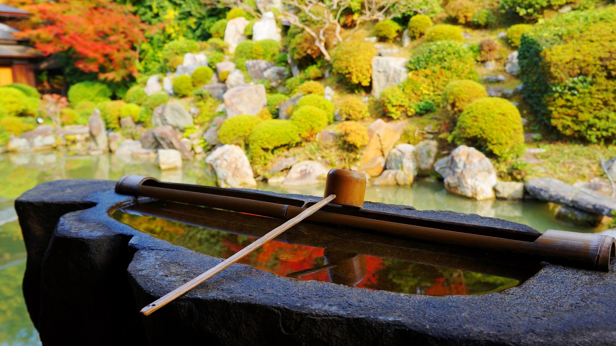 智積院名勝庭園の手水鉢に映る美しい紅葉の水鏡