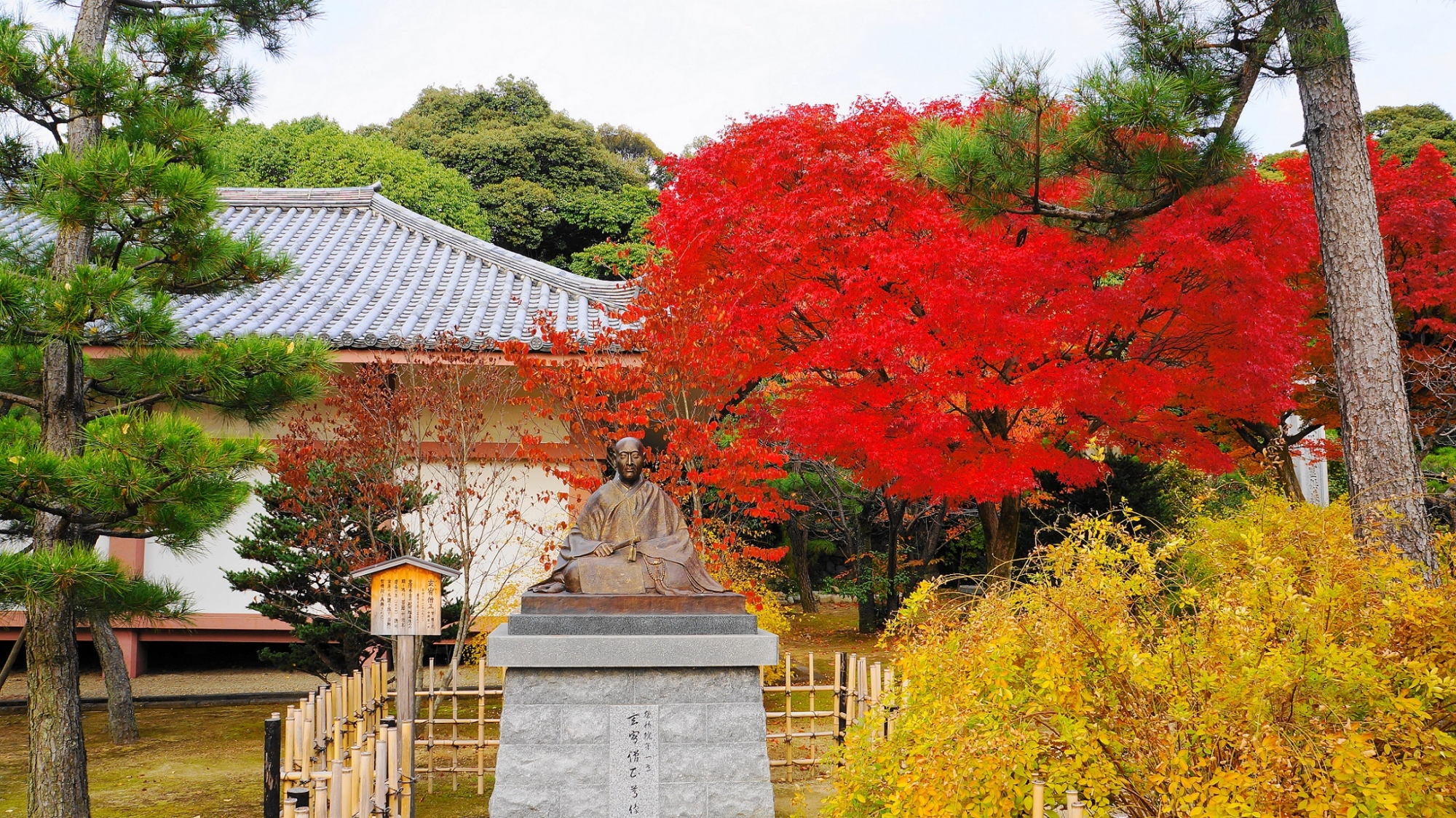 智積院の玄宥僧正像と多彩な秋の彩り
