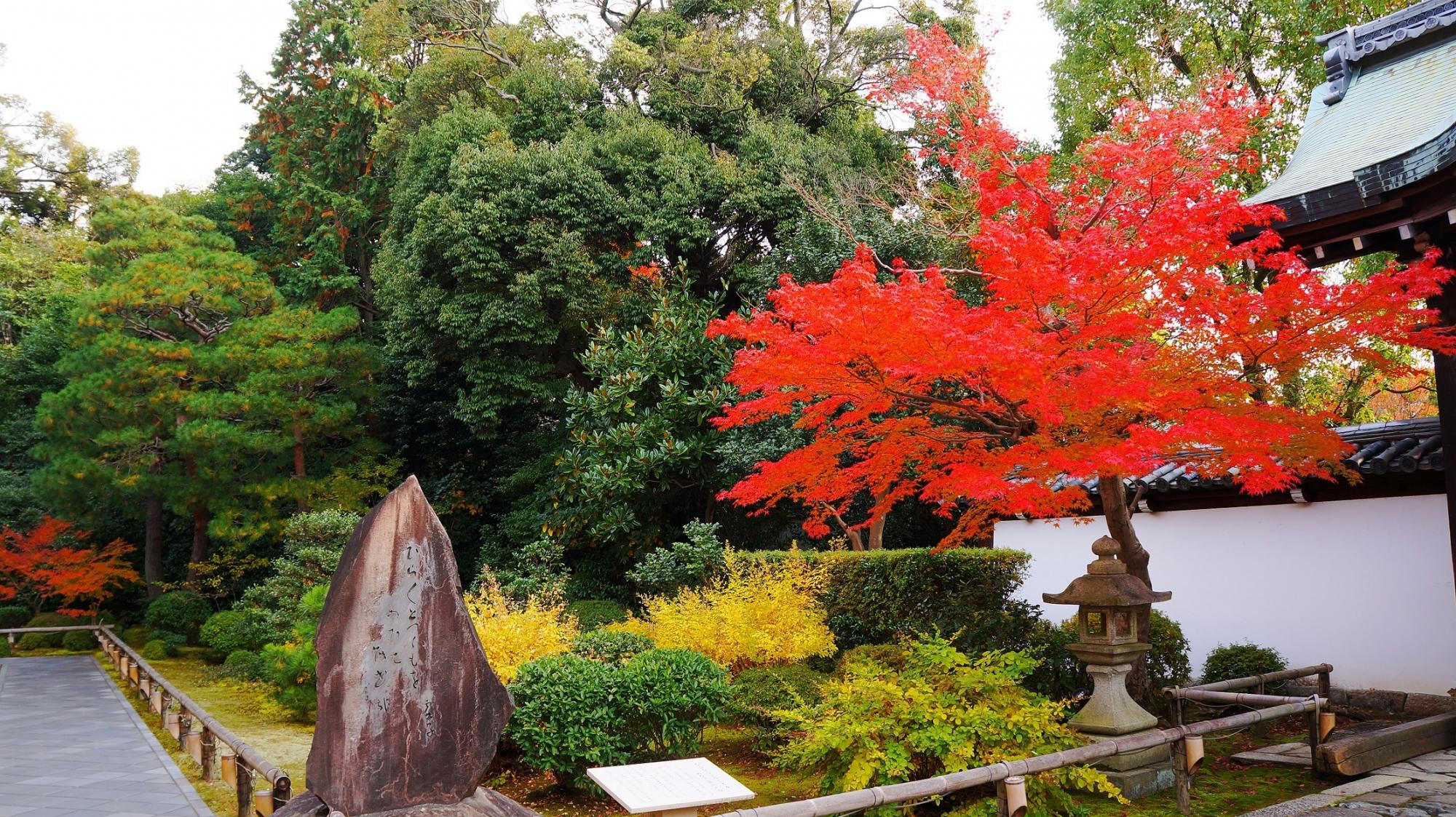 唐門付近の多様な緑にも映える艶やかな紅葉