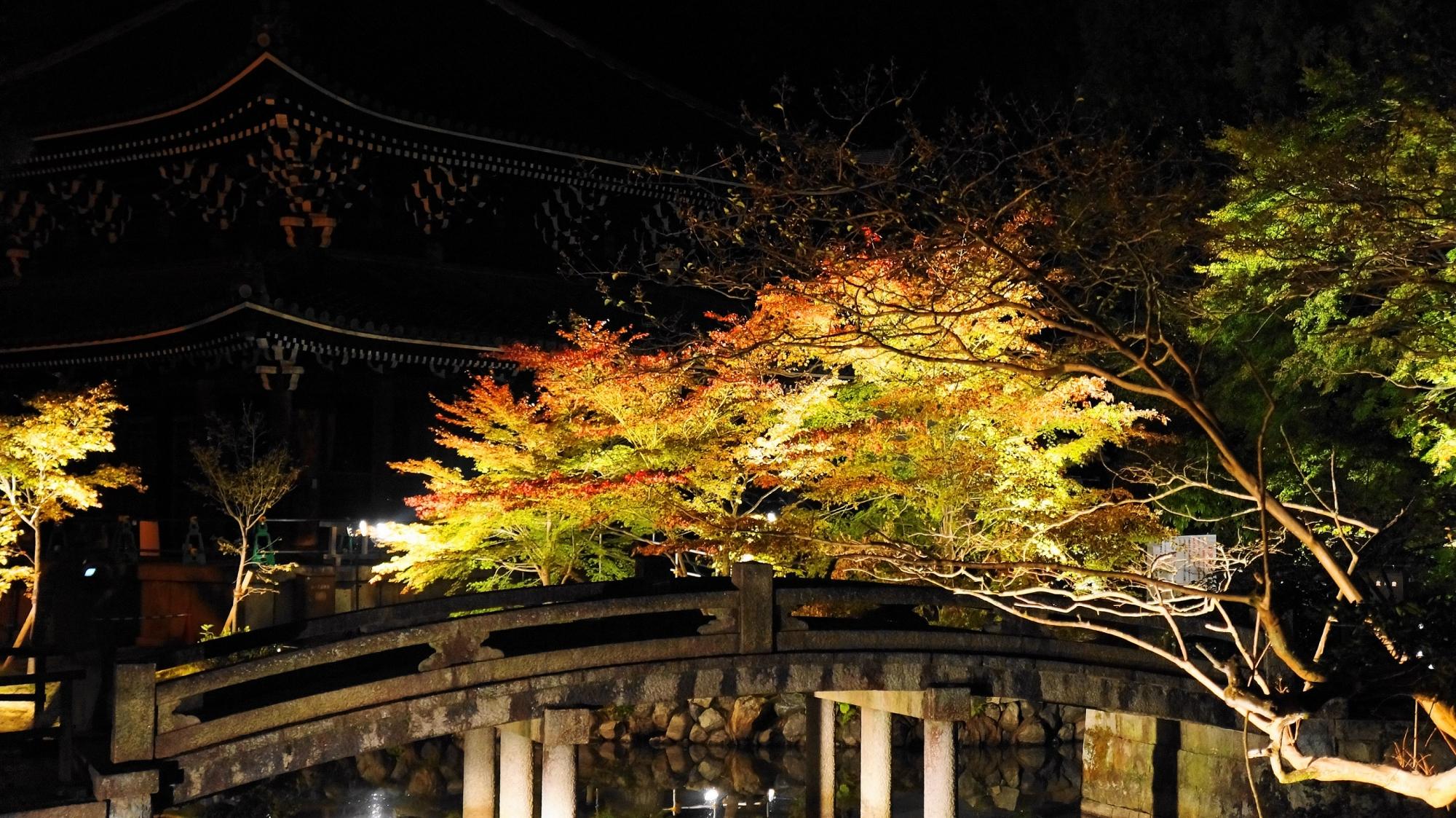 京都知恩院の経蔵前の紅葉ライトアップ