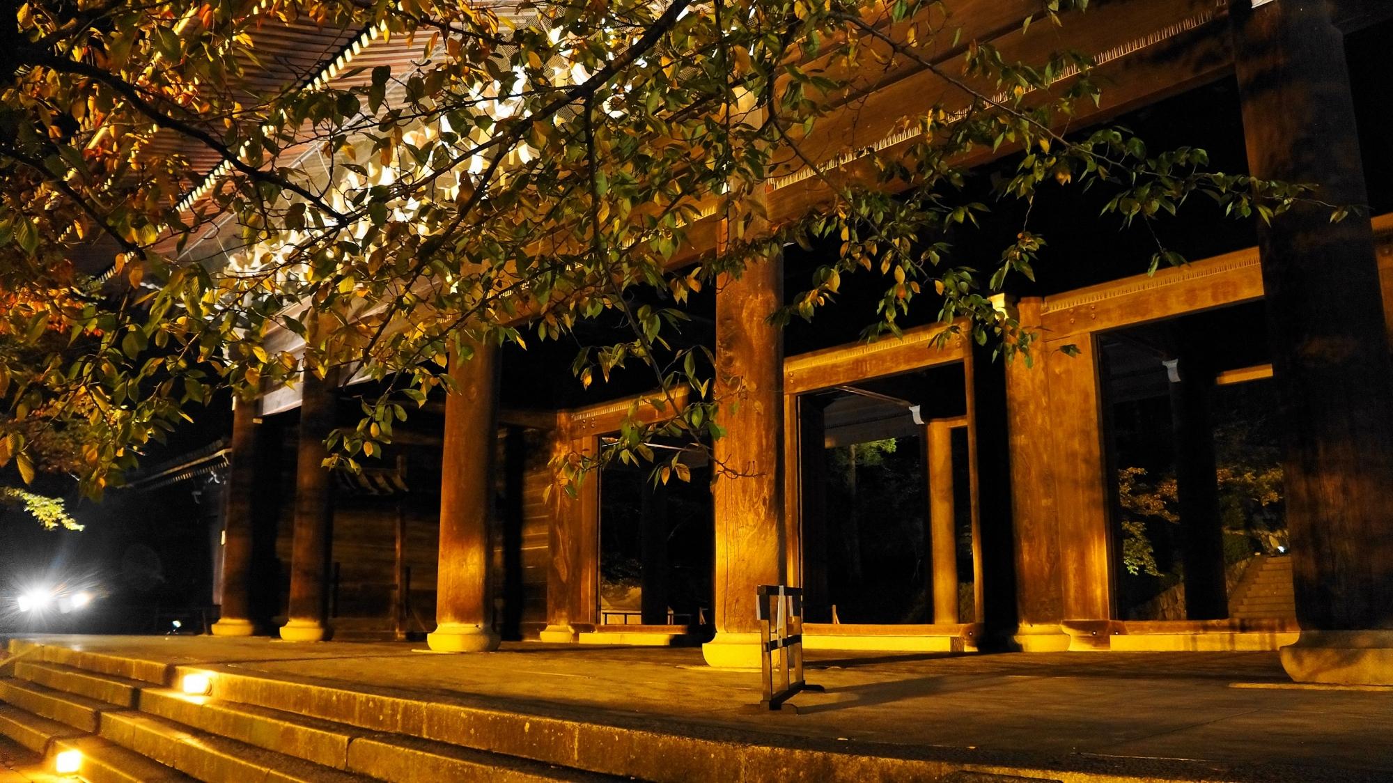 京都知恩院の男坂の幻想的なライトアップ