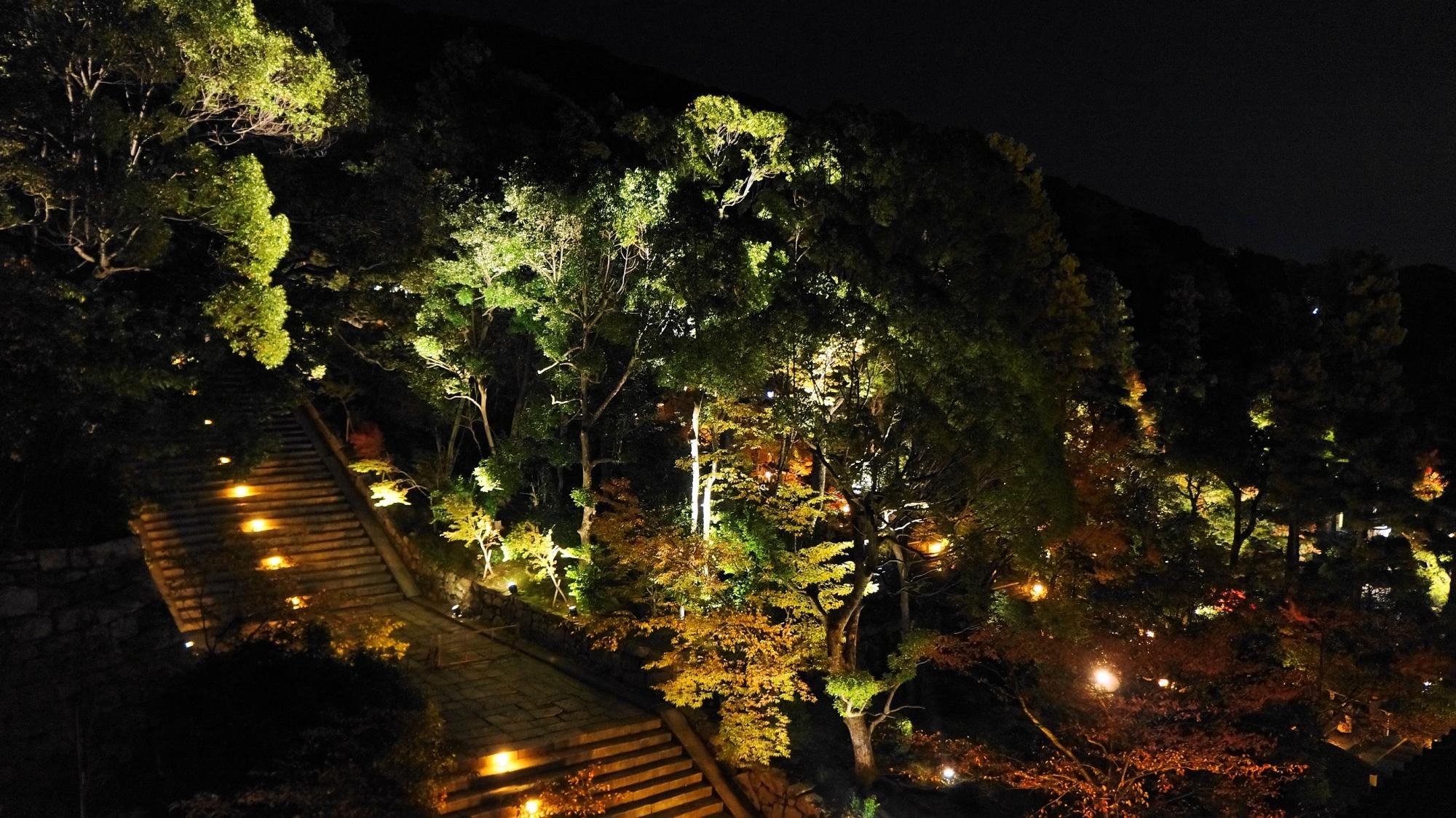 知恩院 三門 ライトアップ 2012年11月