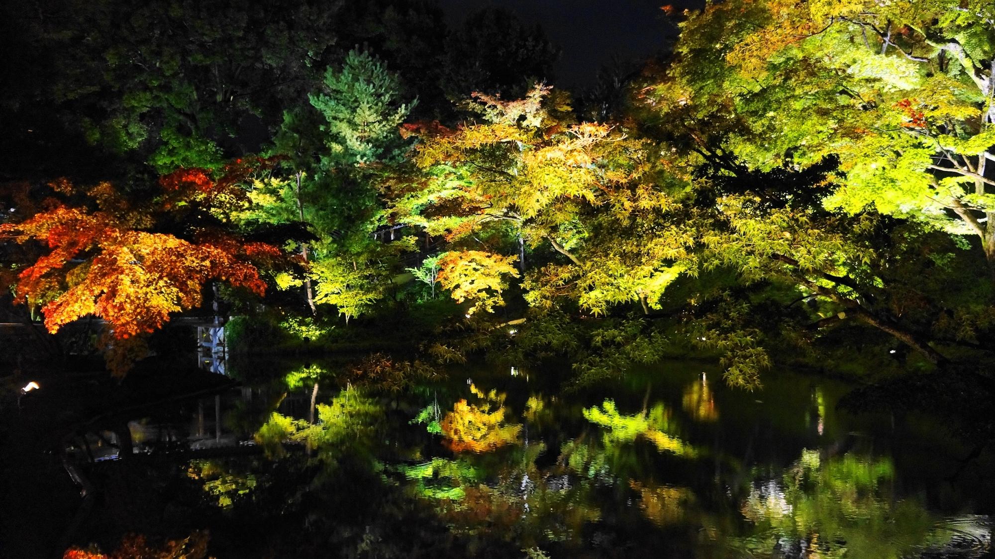 高台寺庭園の臥龍池の紅葉ライトアップ