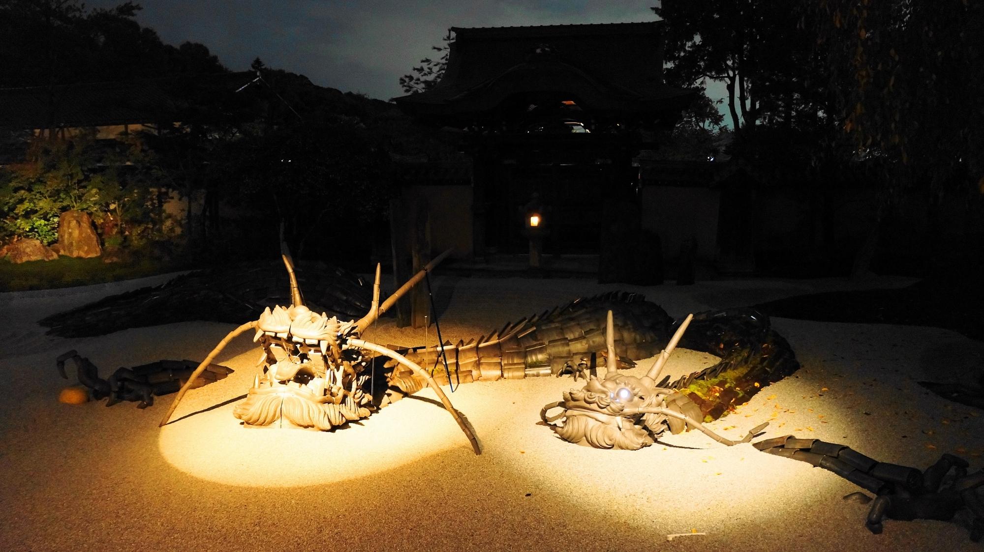 方丈庭園 龍 ライトアップ 幻想的 高台寺