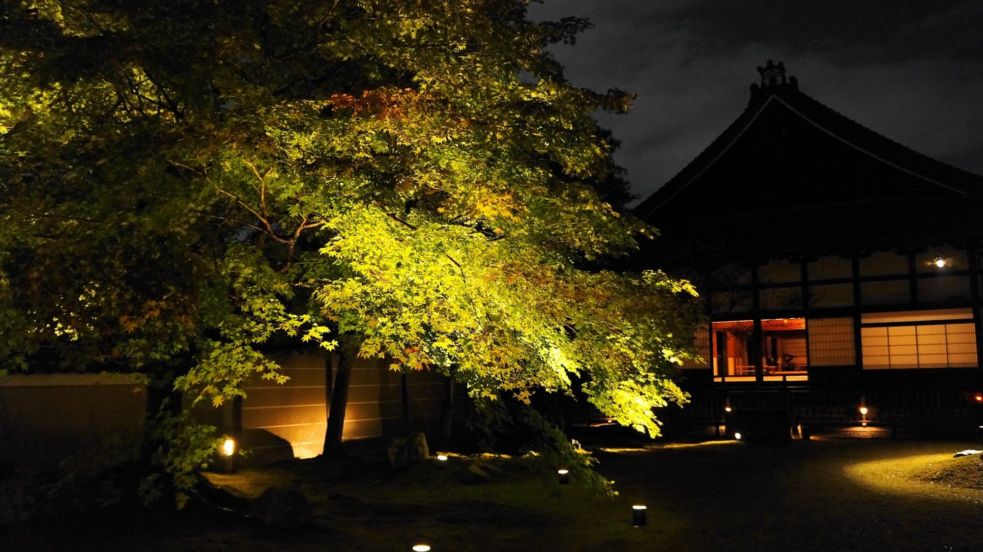 高台寺庭園と方丈のライトアップ