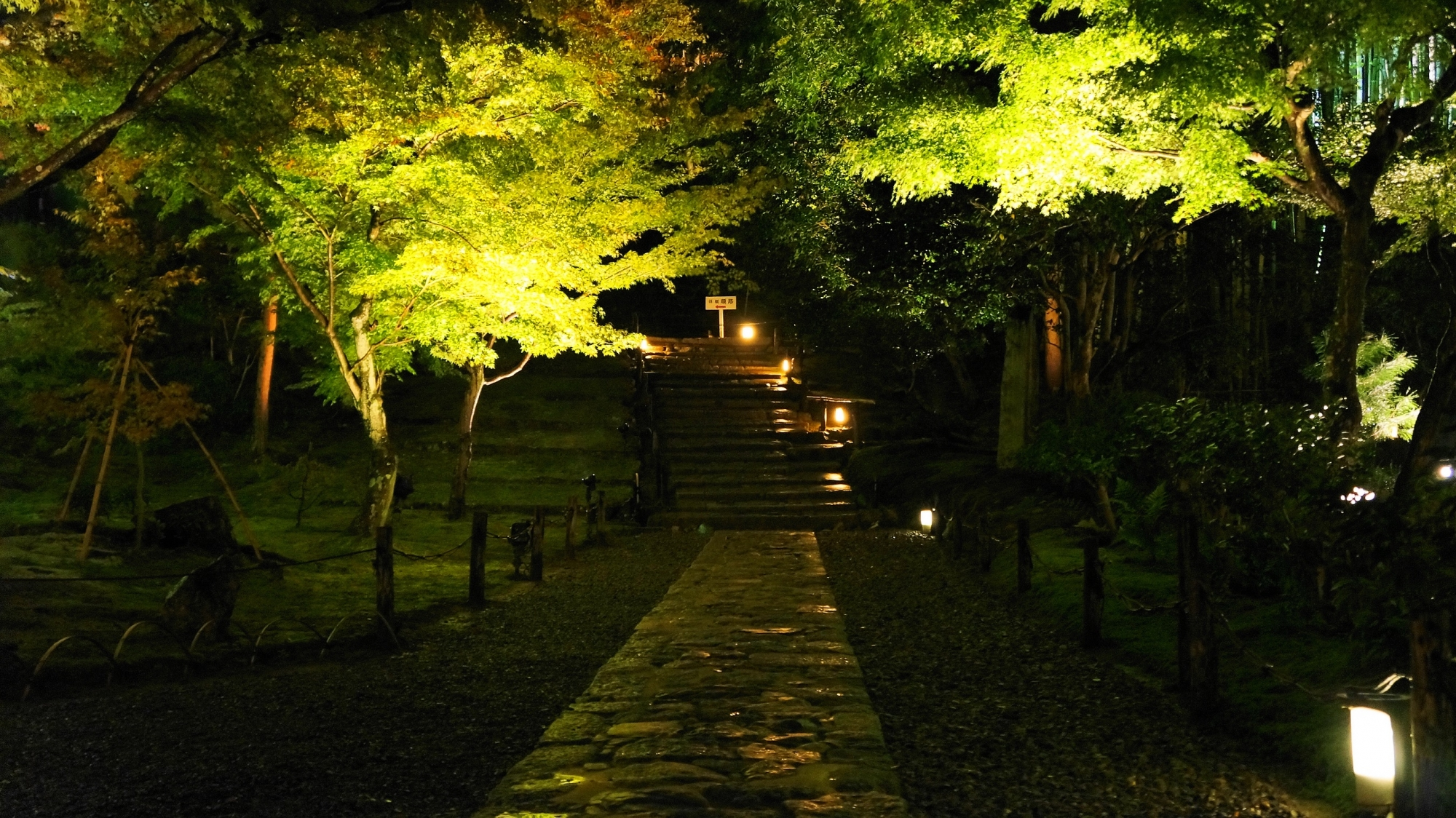高台寺の傘亭へ続く道のライトアップ