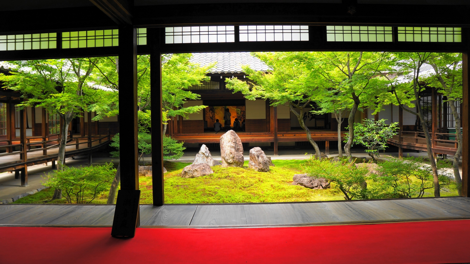 建仁寺の新緑と苔の潮音庭(ちょうおんてい)