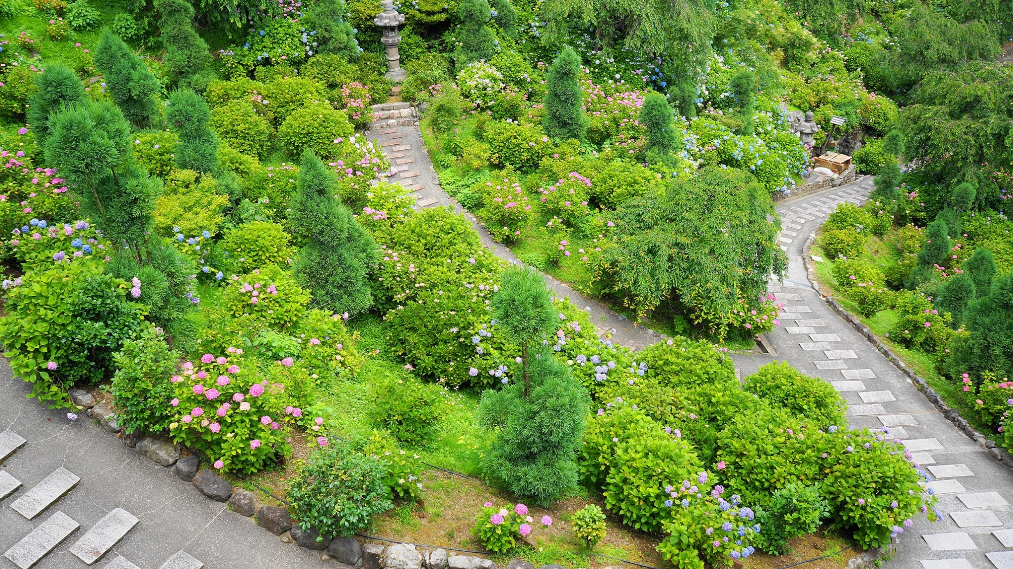 参道が続いており回れるようになっている善峯寺のあじさい苑
