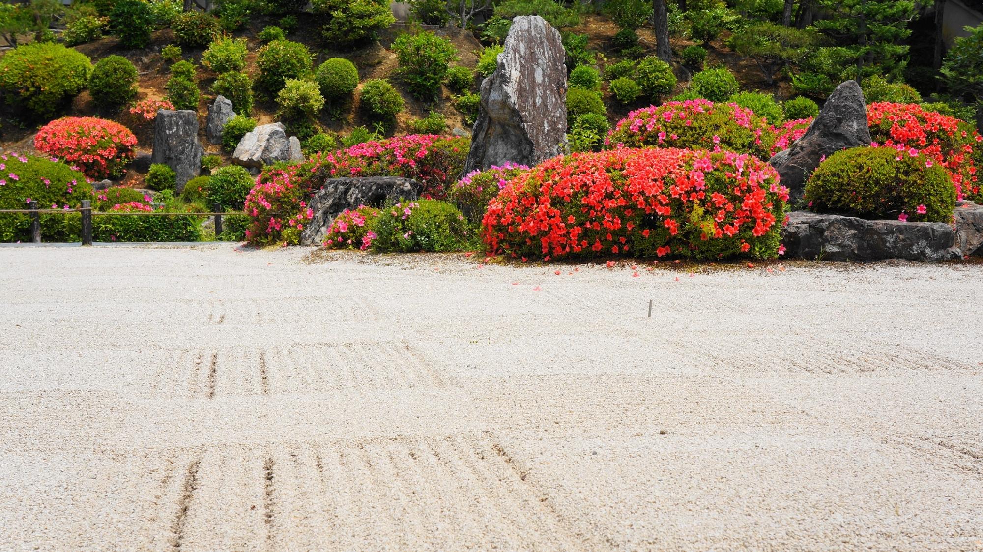 煌くサツキを演出する砂の文様