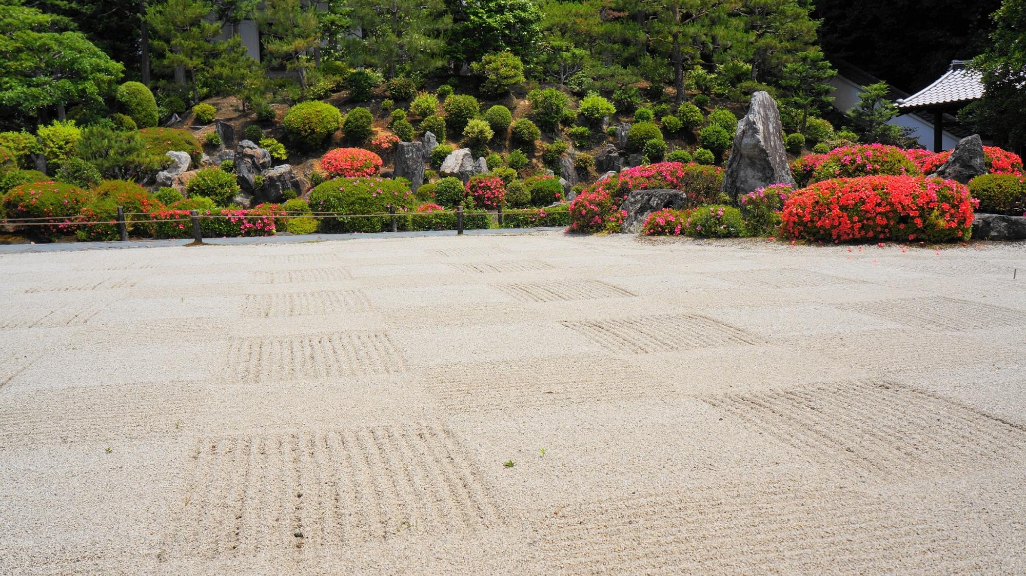 砂の枯山水庭園の向こうにある岩や刈り込みがたくさん配された池泉式庭園