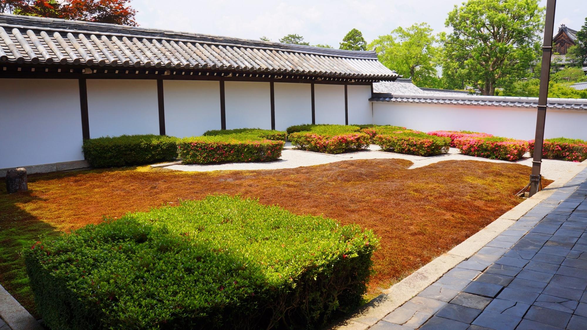 サツキの四角い刈り込みが特徴的な東福寺の方丈庭園の西庭