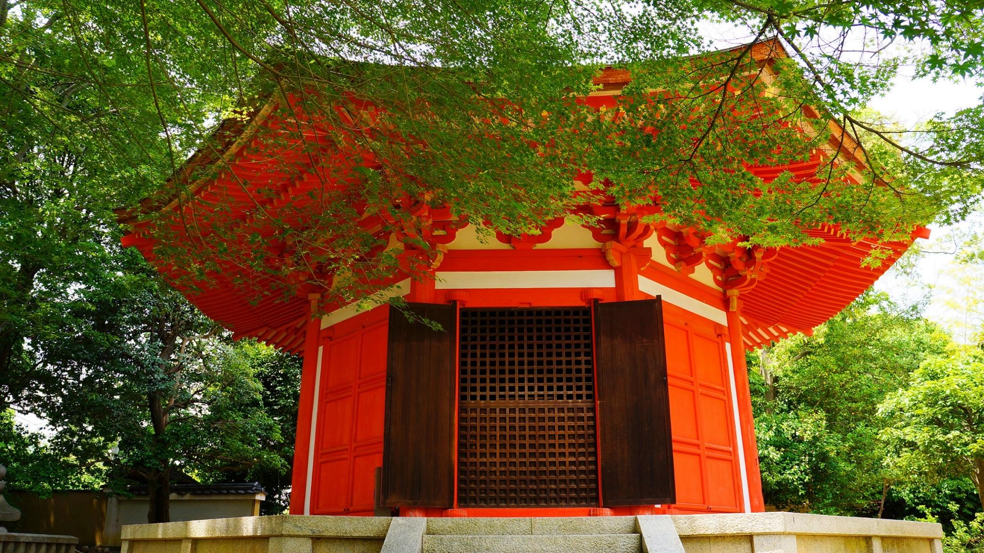 新緑の緑と愛染堂の赤の綺麗なコントラスト