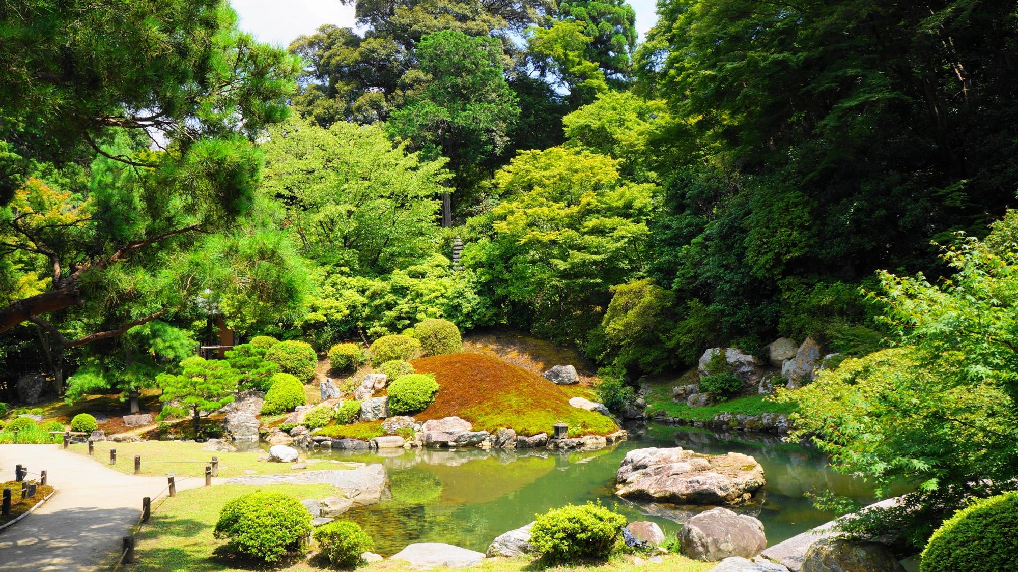 夏の青蓮院の相阿弥の庭と龍心池
